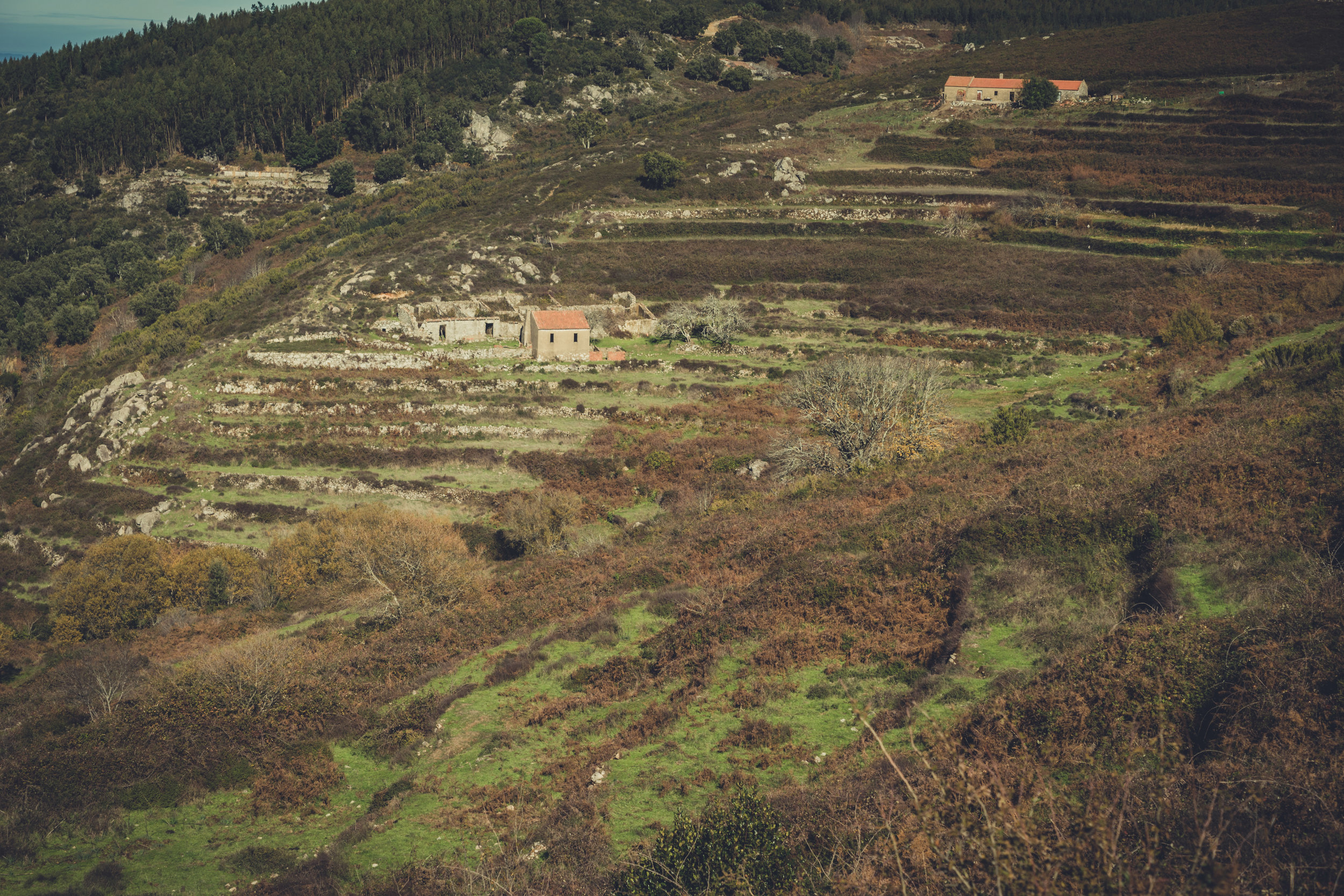 barbelote waterfall monchique portugal. hiking trail. walking trail. evil trees. lots of trees. cork trees. looking down the valley.jpg