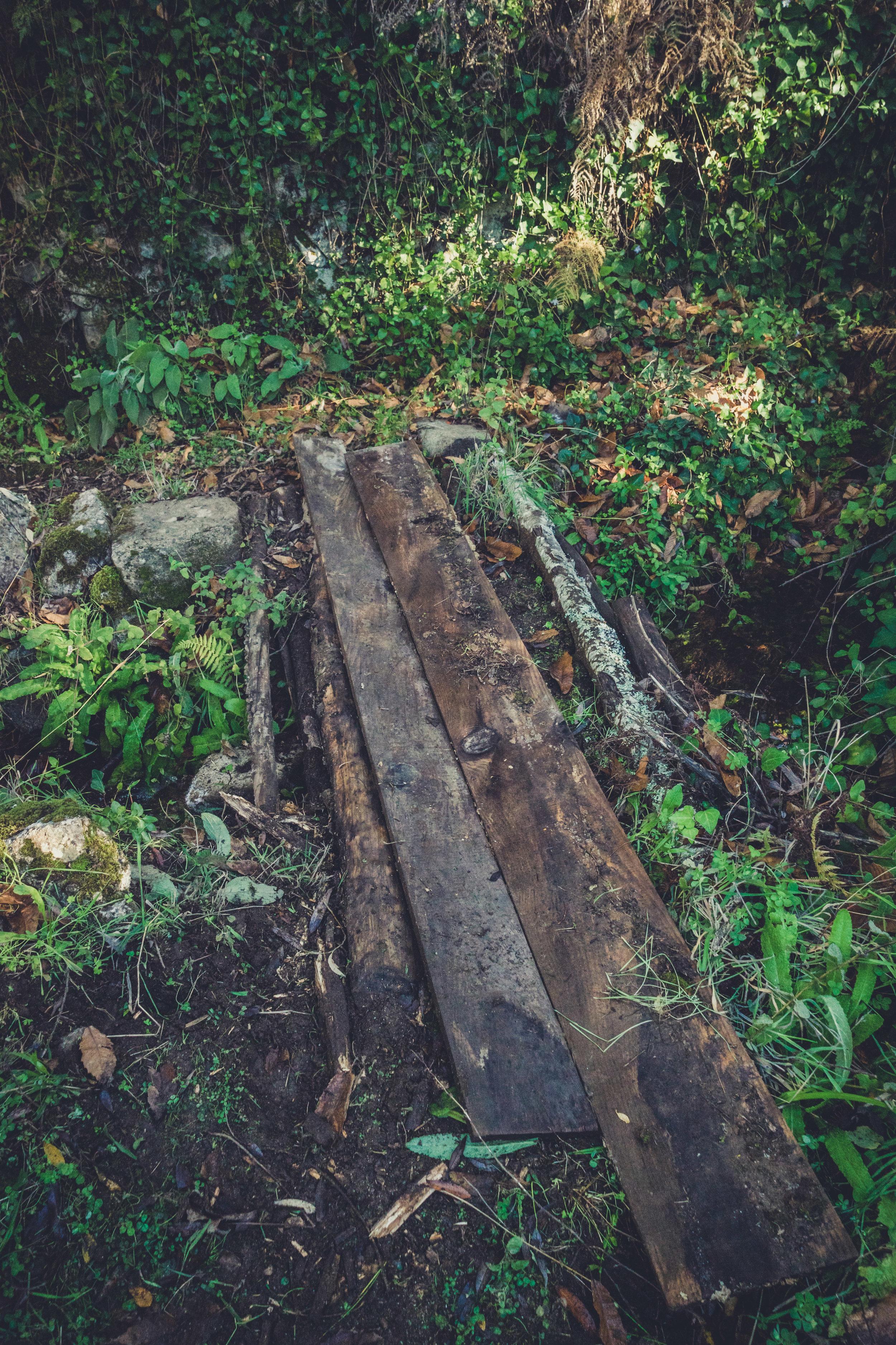 barbelote waterfall monchique portugal. hiking trail. walking trail. evil trees. lots of trees. cork trees. old bridge.jpg