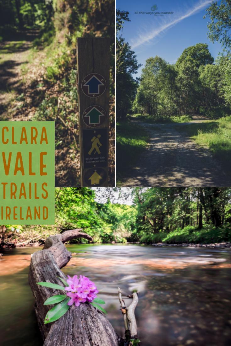 Clara Vale Walks.jpg