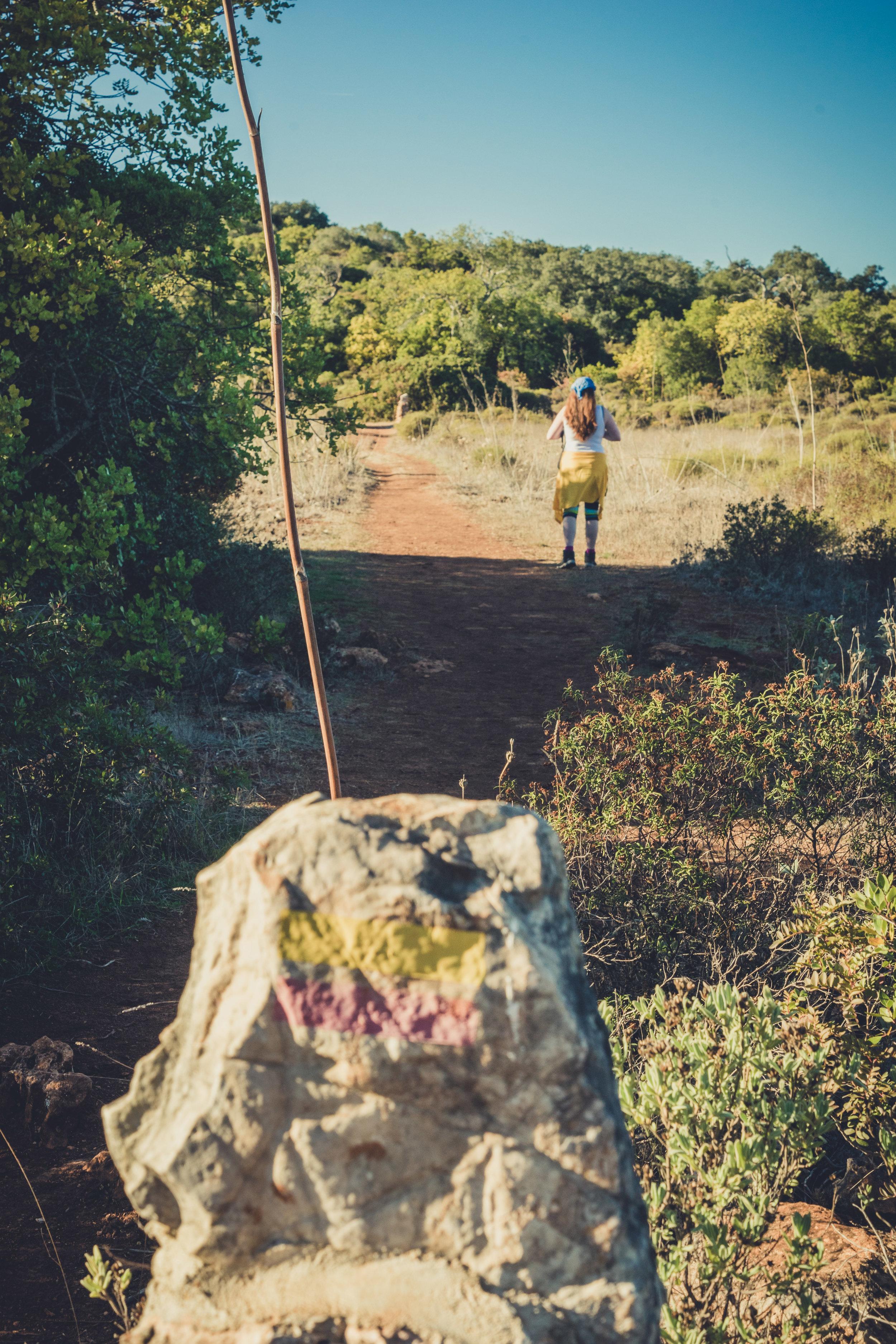 Hiking. algarve. portugal. talbe mountain. walking in the mountains. Rocha da Pena.. tree, view. green. trail makers.jpg