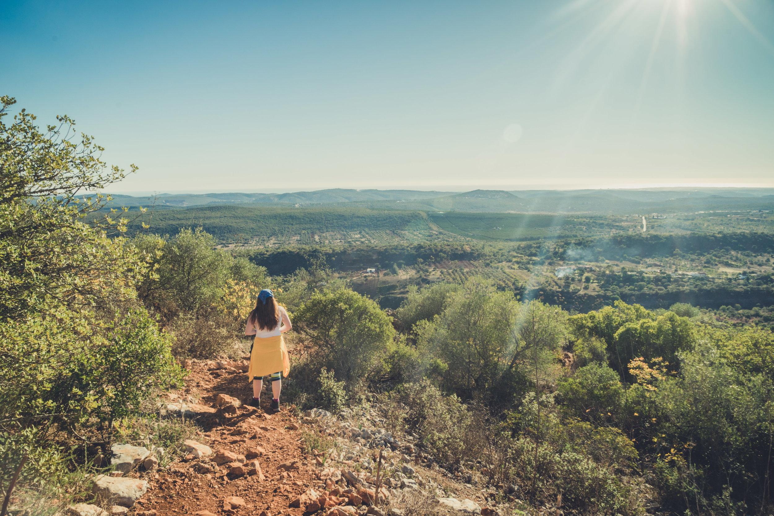 Hiking. algarve. portugal. talbe mountain. walking in the mountains. Rocha da Pena.. tree, view. green. canyon..jpg