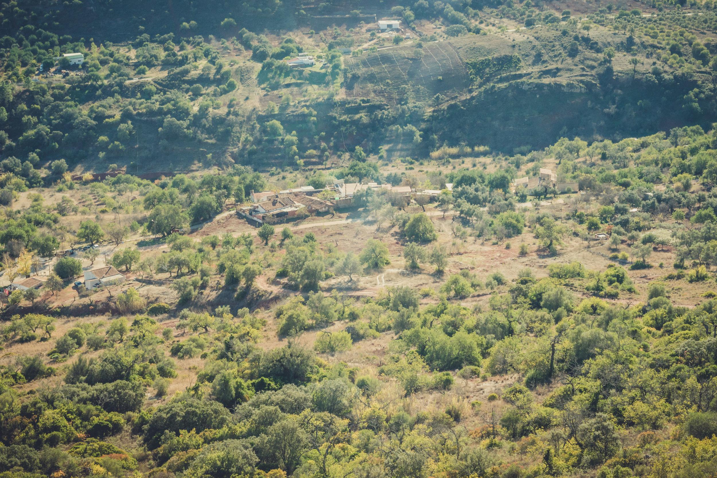 Hiking. algarve. portugal. talbe mountain. walking in the mountains. Rocha da Pena.. tree, view. green...jpg