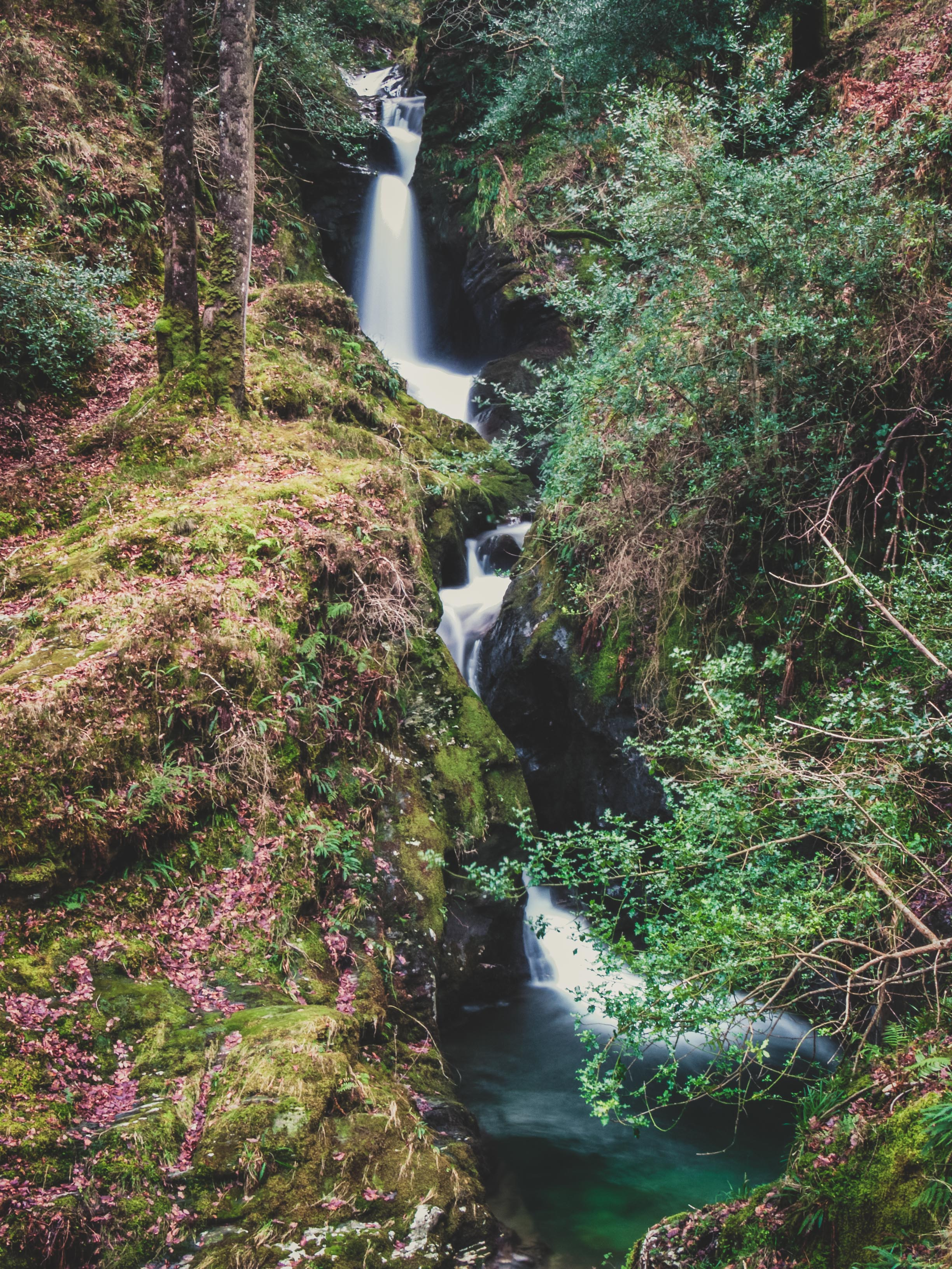 glendalough. irish history. county wicklow. round tower. hill walknig. hiking. grave yard. wildlife. tombstones. lakes. blue sky. tower. waterfall..jpg