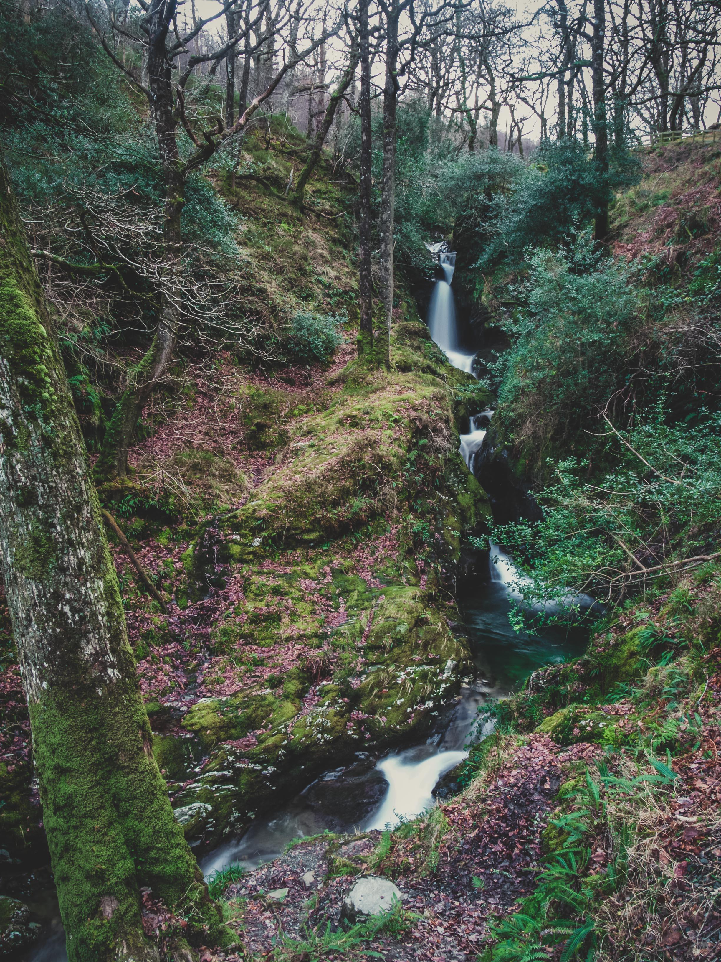 glendalough. irish history. county wicklow. round tower. hill walknig. hiking. grave yard. wildlife. tombstones. lakes. blue sky. tower. waterfall.jpg