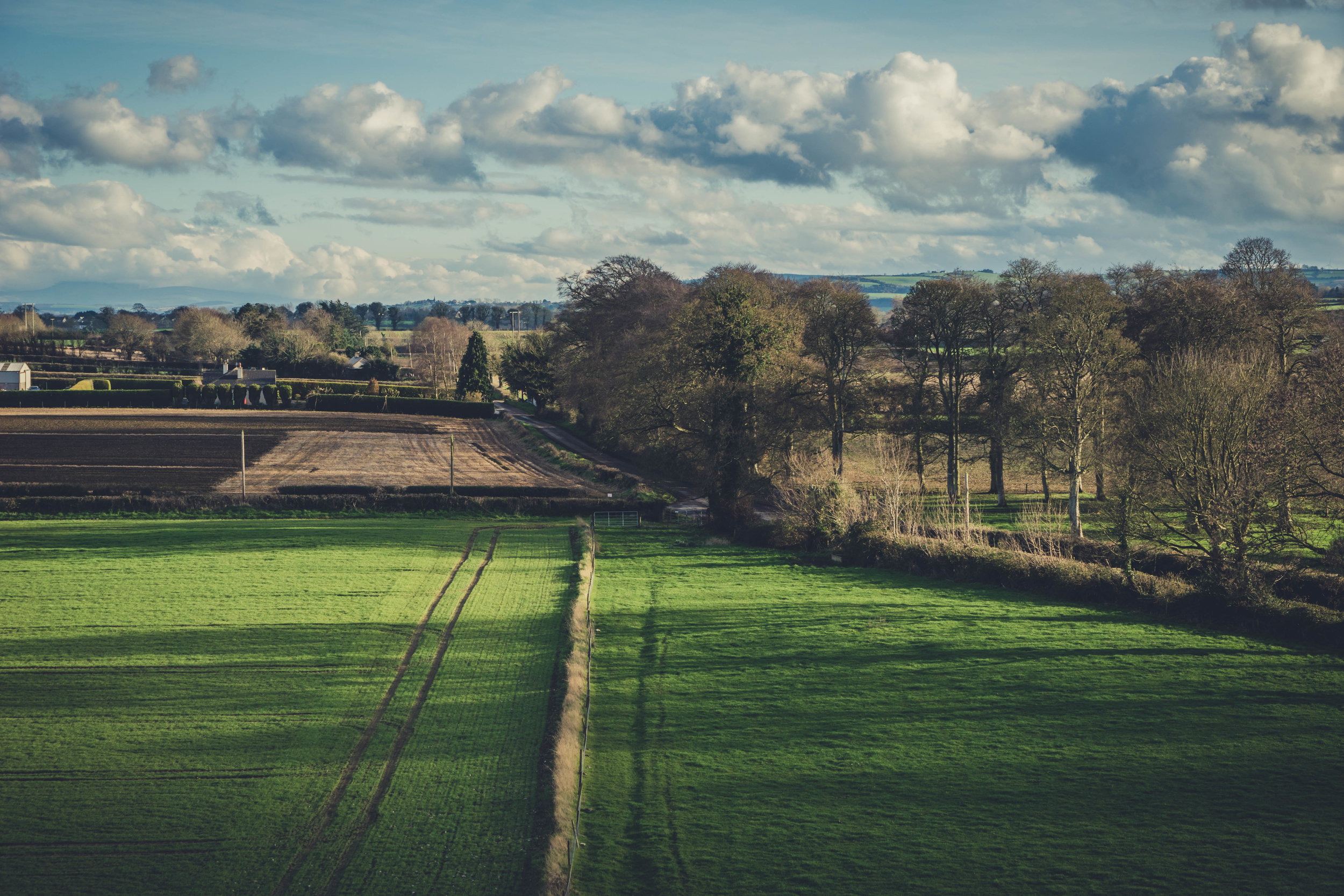 Ireland. Castle. Old castle. irish history. history. Rock of Dunamase. blue sky. rock. pathway. adventure. travel. irish counrty. green fields..jpg