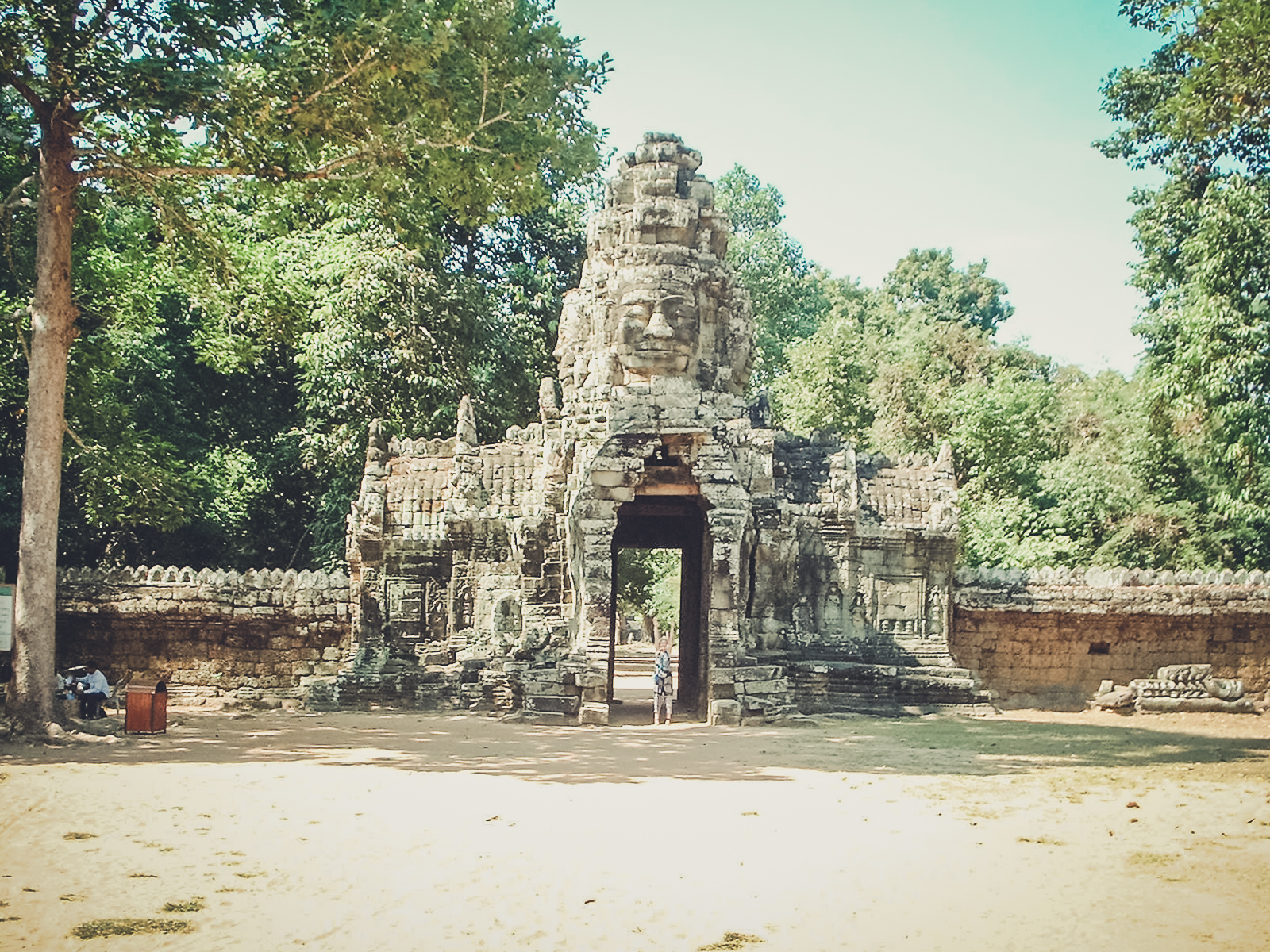 backpacking. south east asia. travel. young. thailand. cambodia. malaysia. couple. trip. under the big tree.jpg