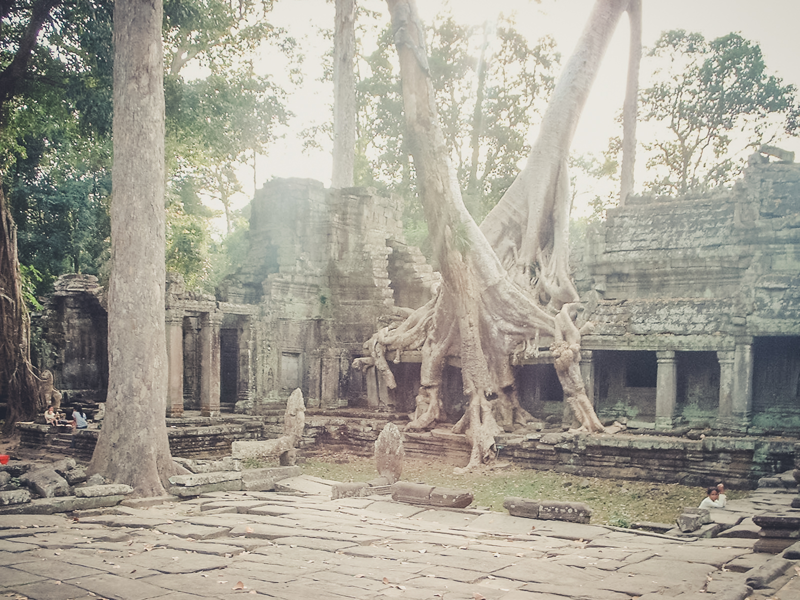 ruins_backpacking. south east asia. travel. young. thailand. cambodia. malaysia. couple. trip. chilling out. ankor trees.jpg