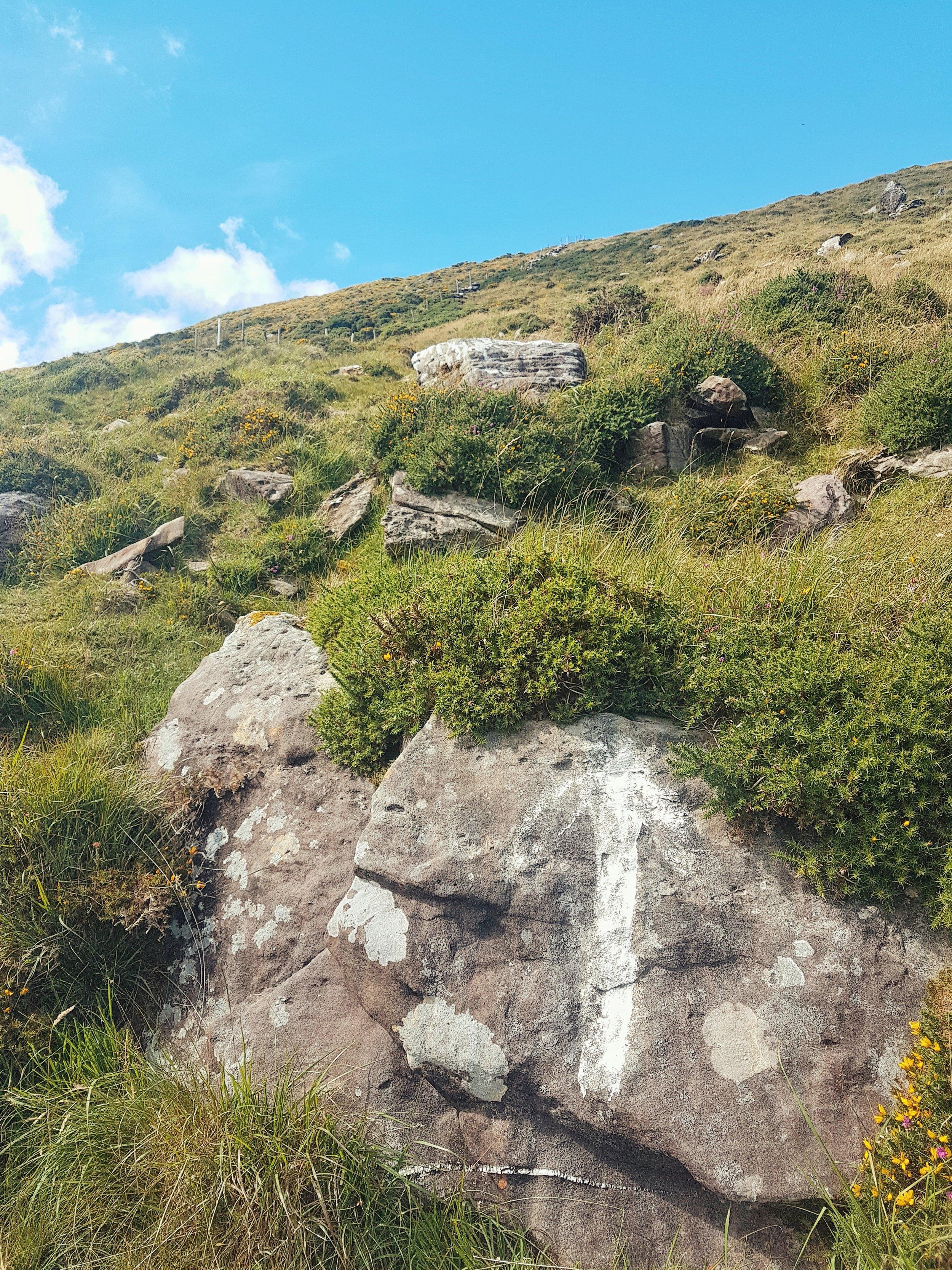 Ireland. Wild Atlantic Way. Kerry. Counthy Kerry. Travel photography. Landscape photography. Blog. Irish. Travelling Ireland. Ireland west coast. Wild Landscape. Trip. Vacation.  (6).jpg