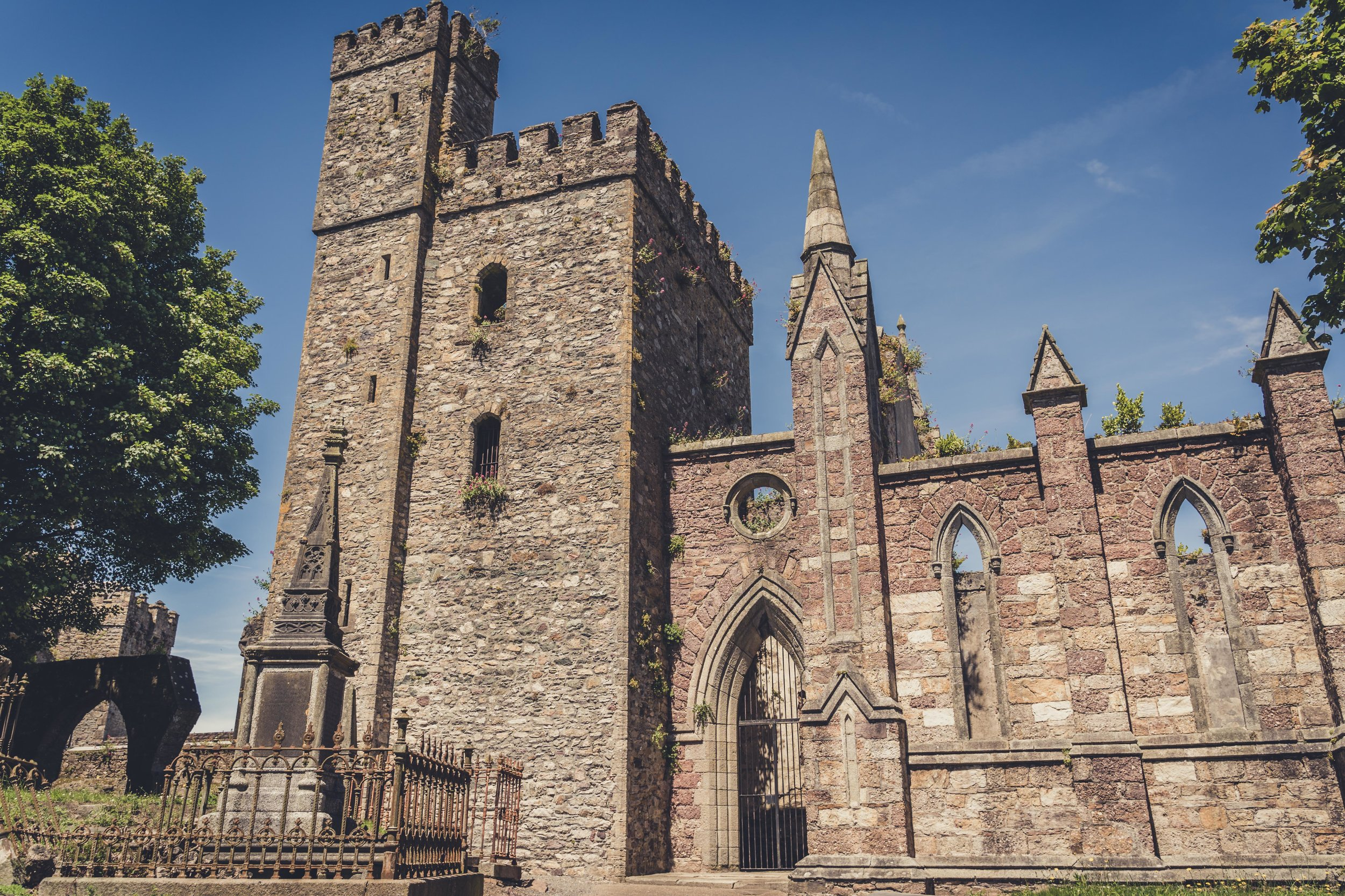 selskar abbey and wexford town ireland ruin.jpg