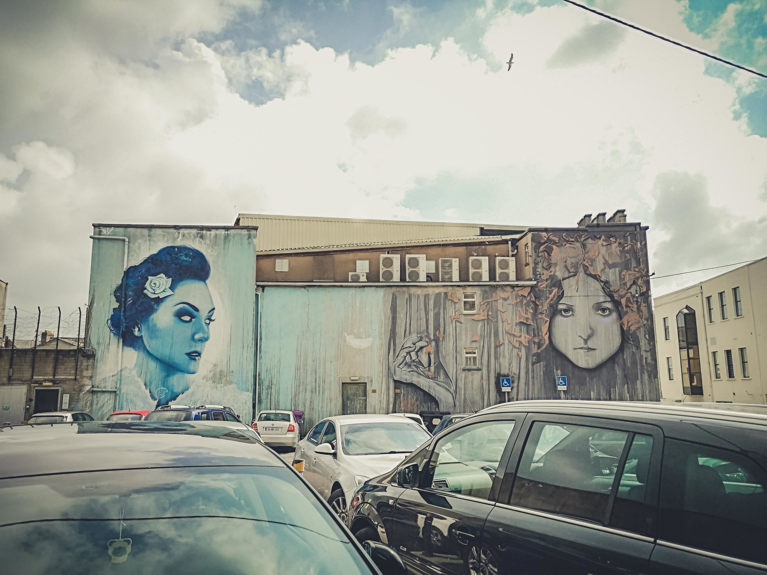 waterford ireland streetart,,.jpg