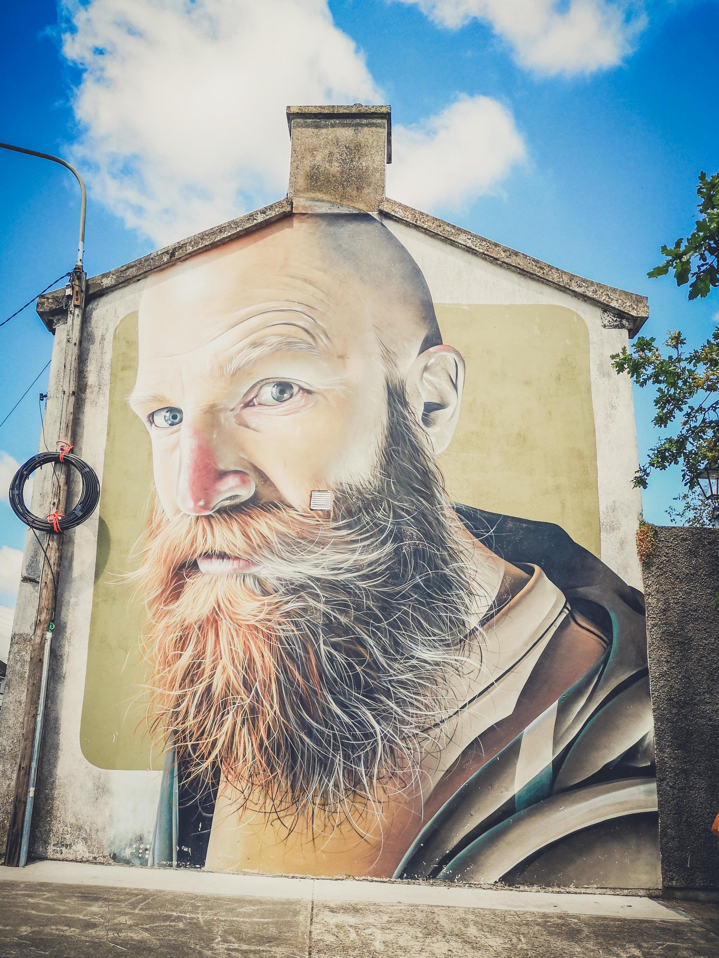waterford ireland streetart,..jpg
