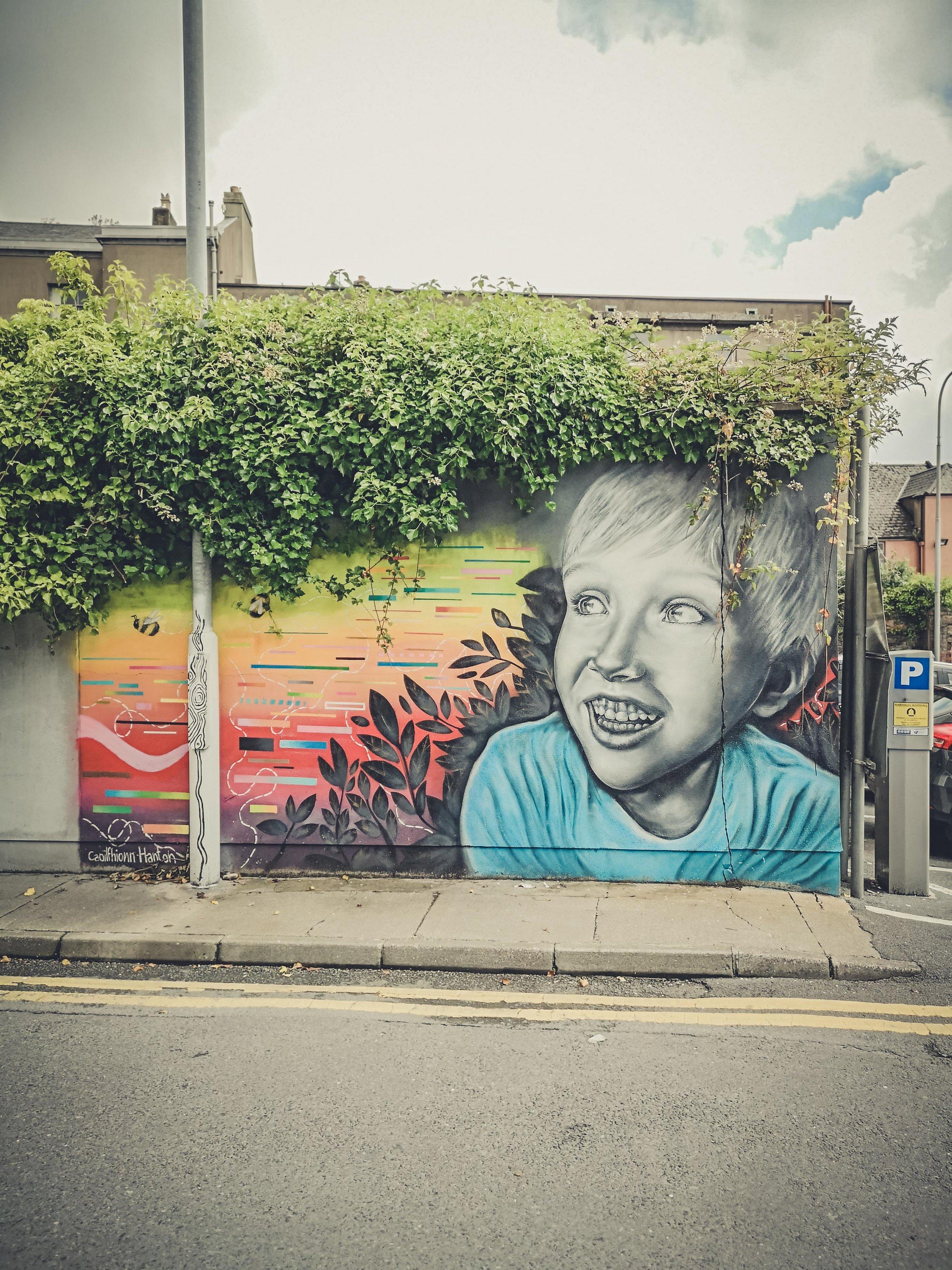 waterford ireland streetart,.jpg