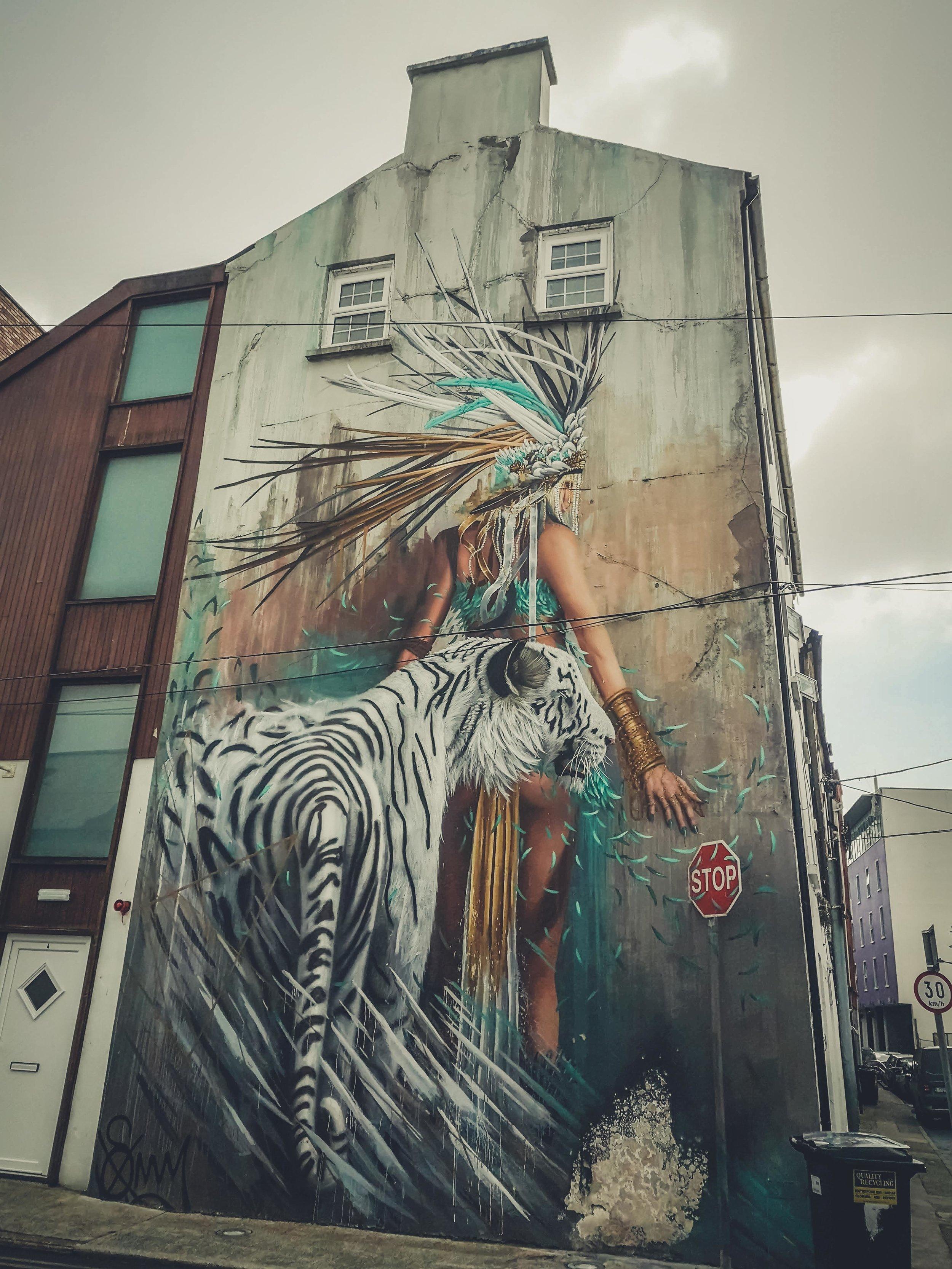 waterford ireland streetart.jpg
