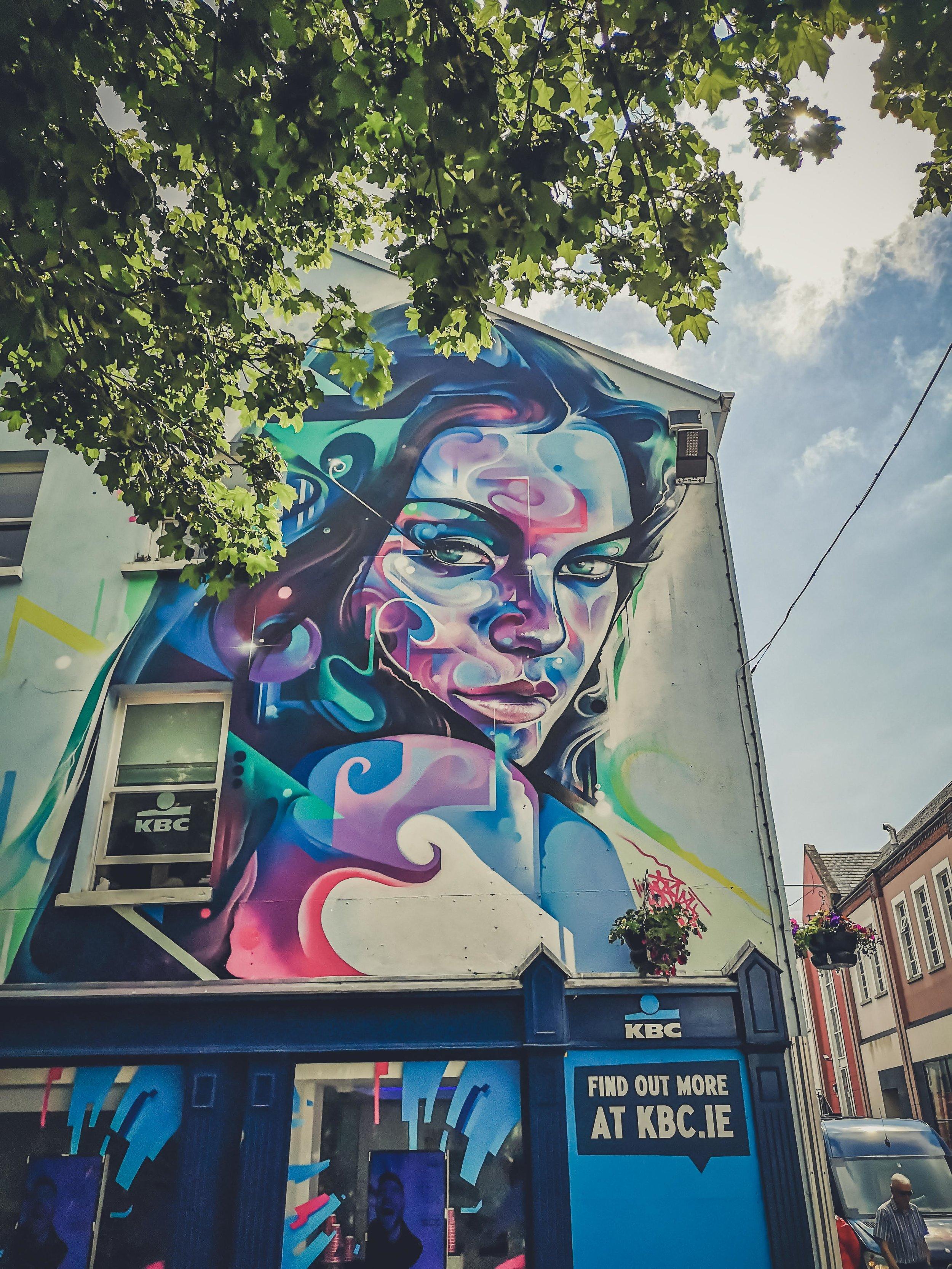 waterford ireland streetart;.jpg