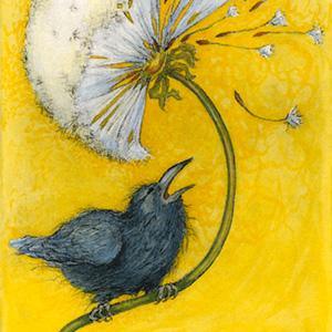 Little Ravens Big Wish.300.jpg