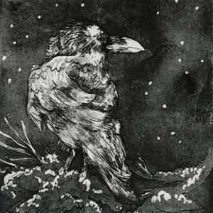 Raven To The Stars - Glittery black eyes blinking in the surrounding darkness. A ricochet of starlight against sheen of feathers. Stark raven? I think not.
