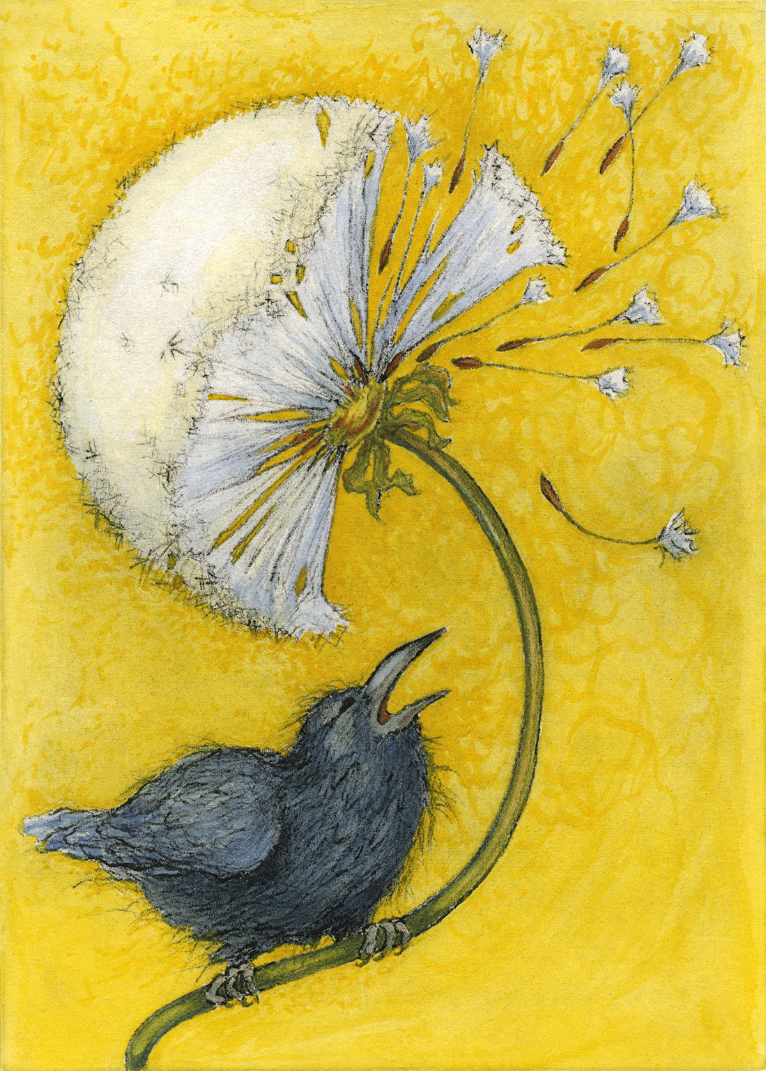 Little Raven's Big Wish - I love the humble dandelion. We enjy a peaceful co-existance. So many folks rail against them, yanking 'em out, heaping poison upon them (and our environment). Well, I tell ya what… they've been around since the dinosaurs, and will undoubtedly be here long after my demise, so I figger we may as well get along