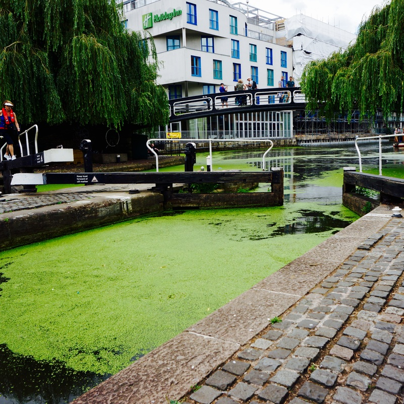 14 Regent's Canal.jpg