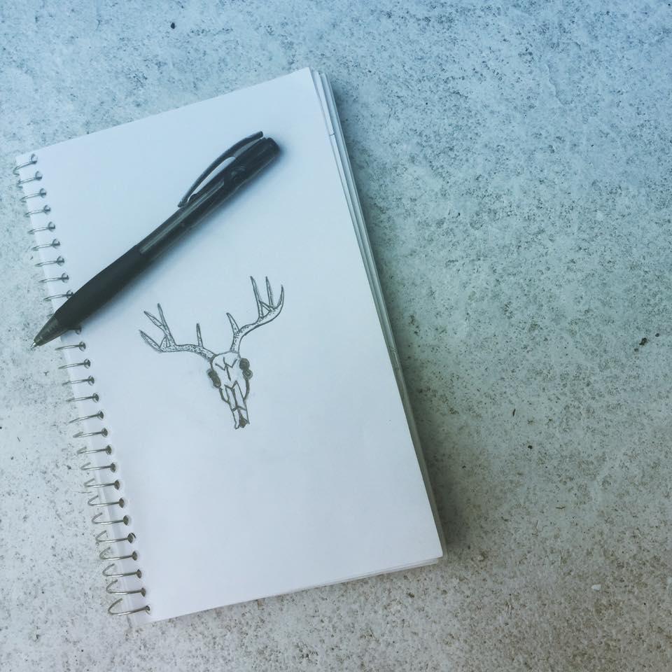 Gazelle skull illustration -