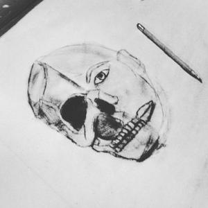 skull illustration -