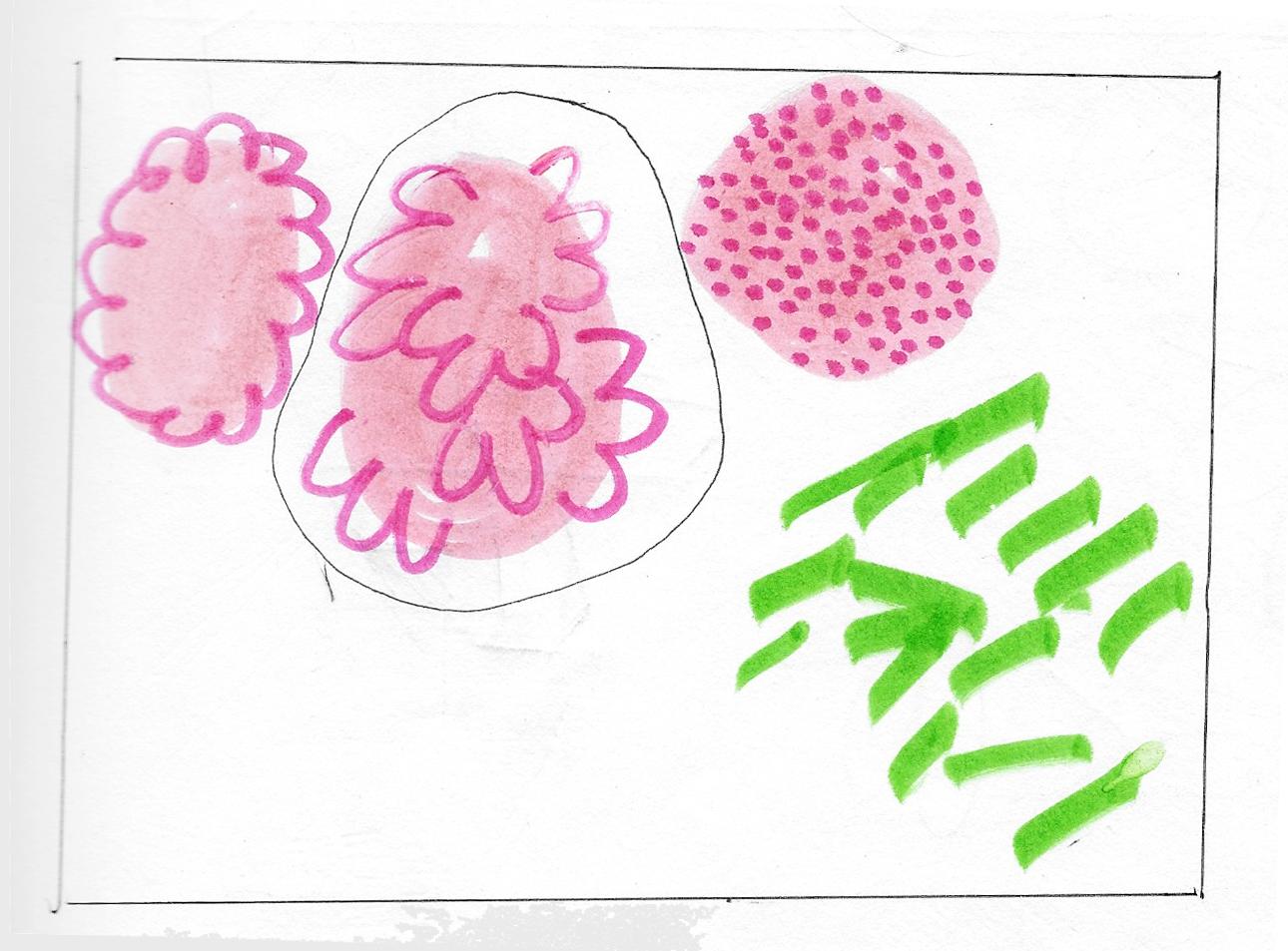 sketchbook7.jpg