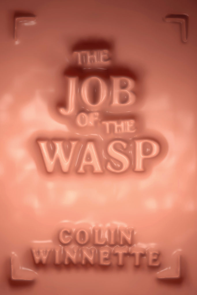 The-Job-of-The-Wasp_cvr_CoreSource-683x1024.jpg