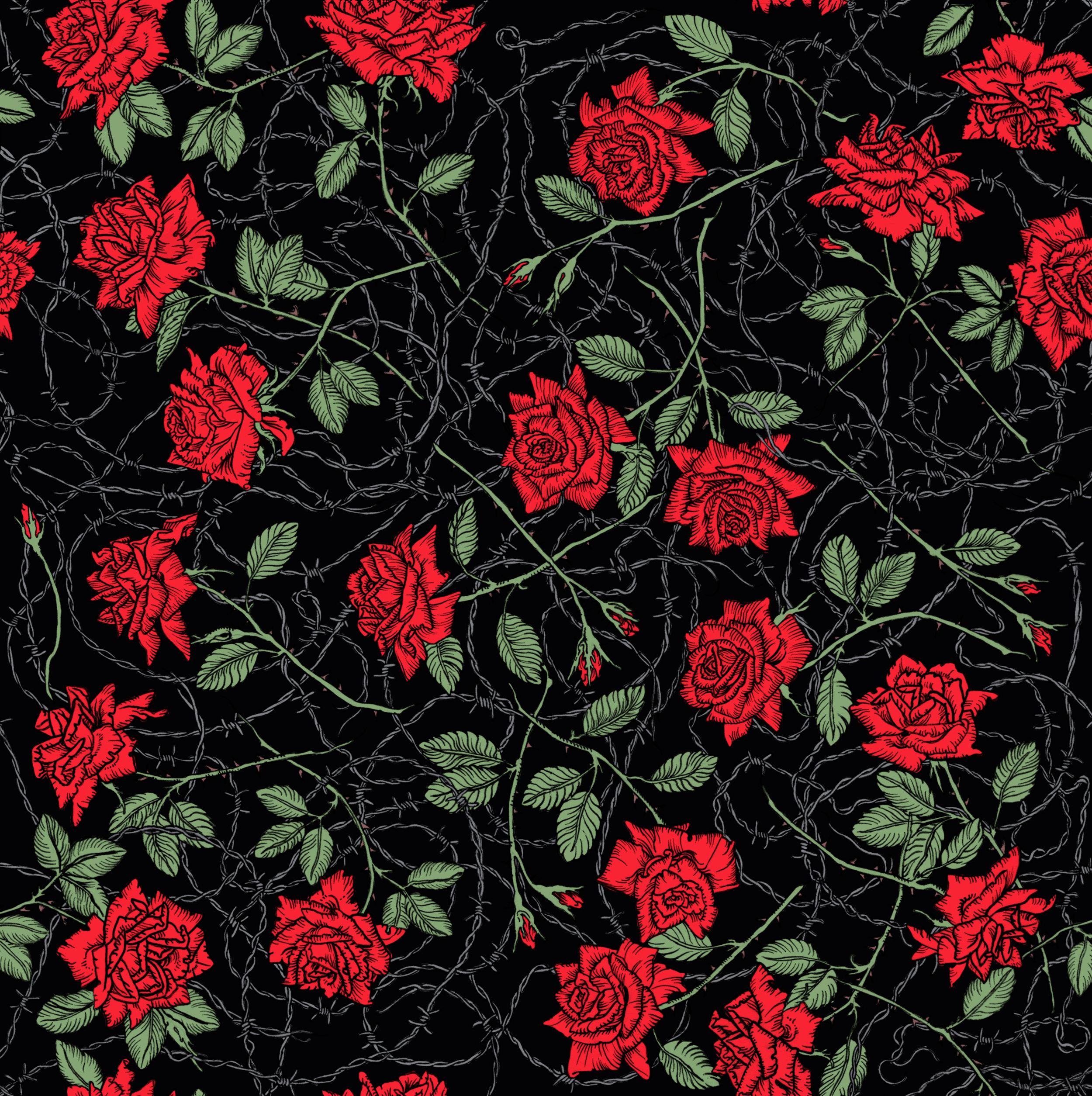 barbed roses black.jpg