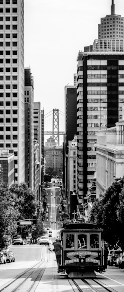San Francisco is the leader in mass transit and green transportation initiatives and is served by an extensive network of seaports, rail, road and air routes
