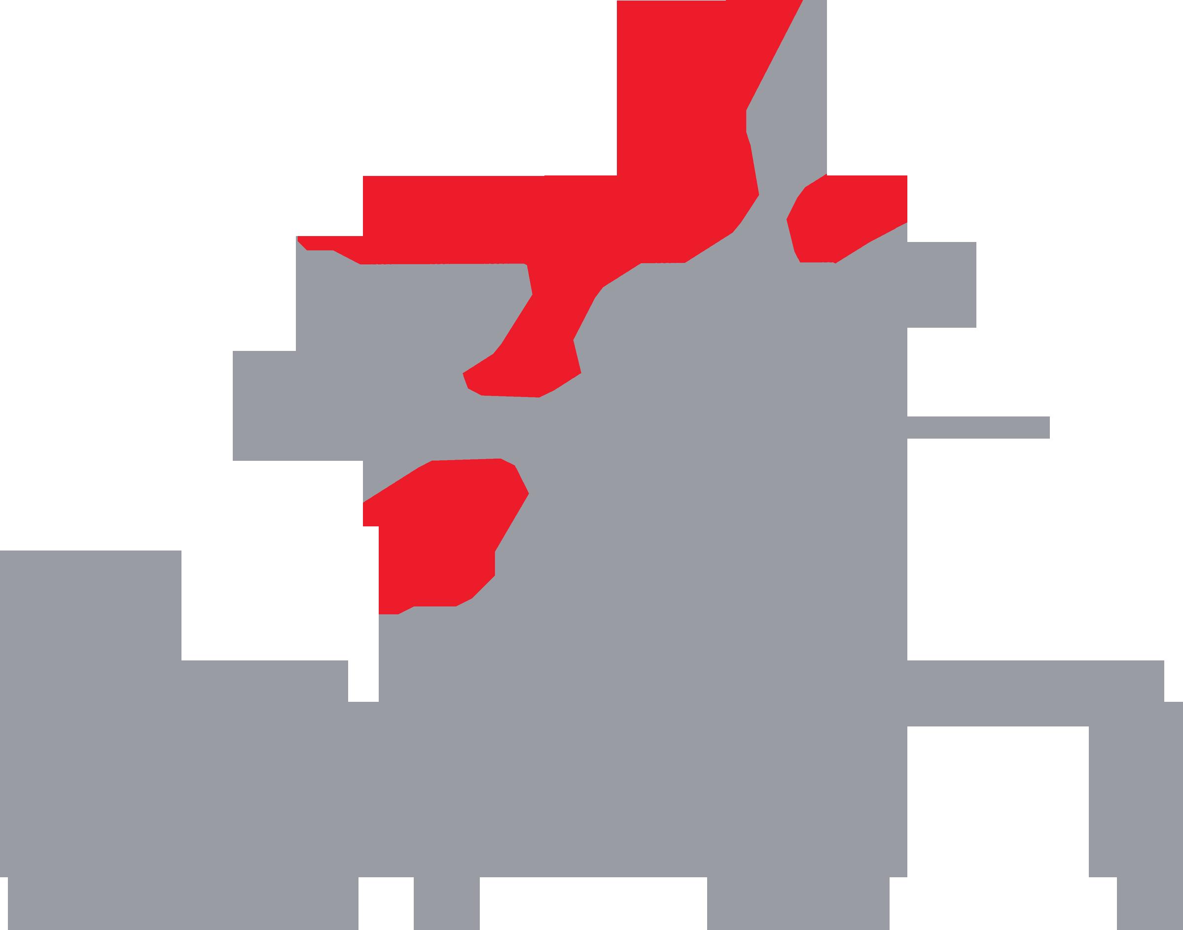 29446-BNN-Logo.png