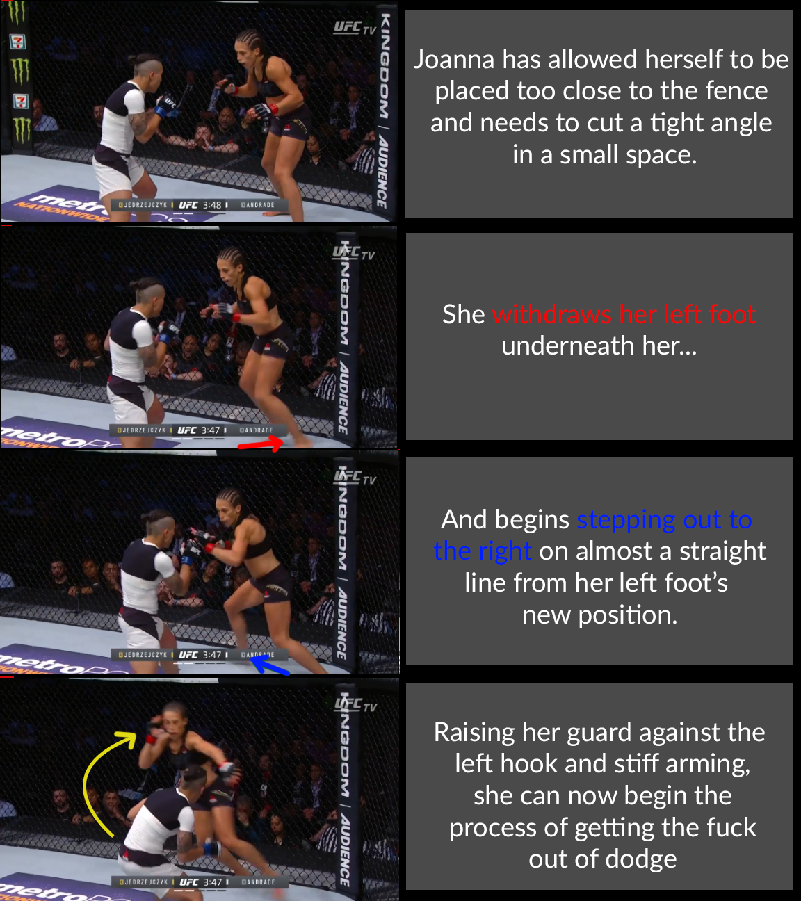Joanna Switch Step Annotated.png