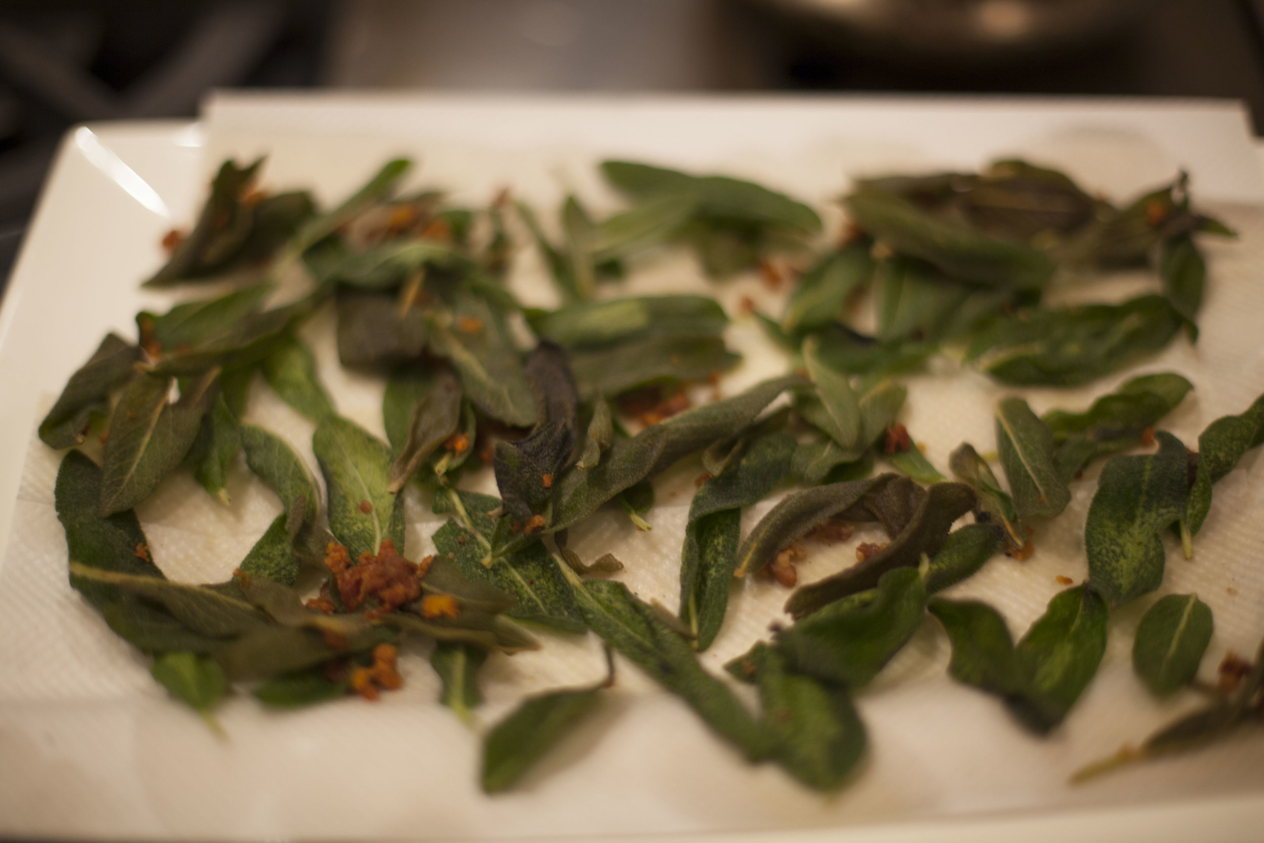 Here are the fried sage leaves we used to garnish the pasta dish.