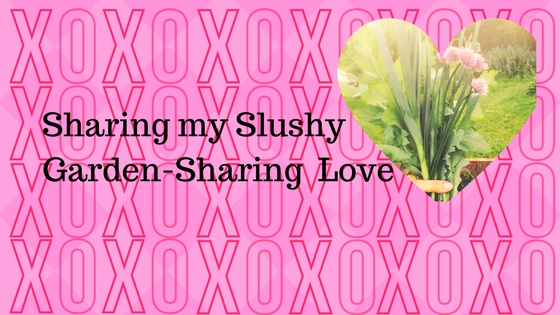 Valentines Blog.jpg