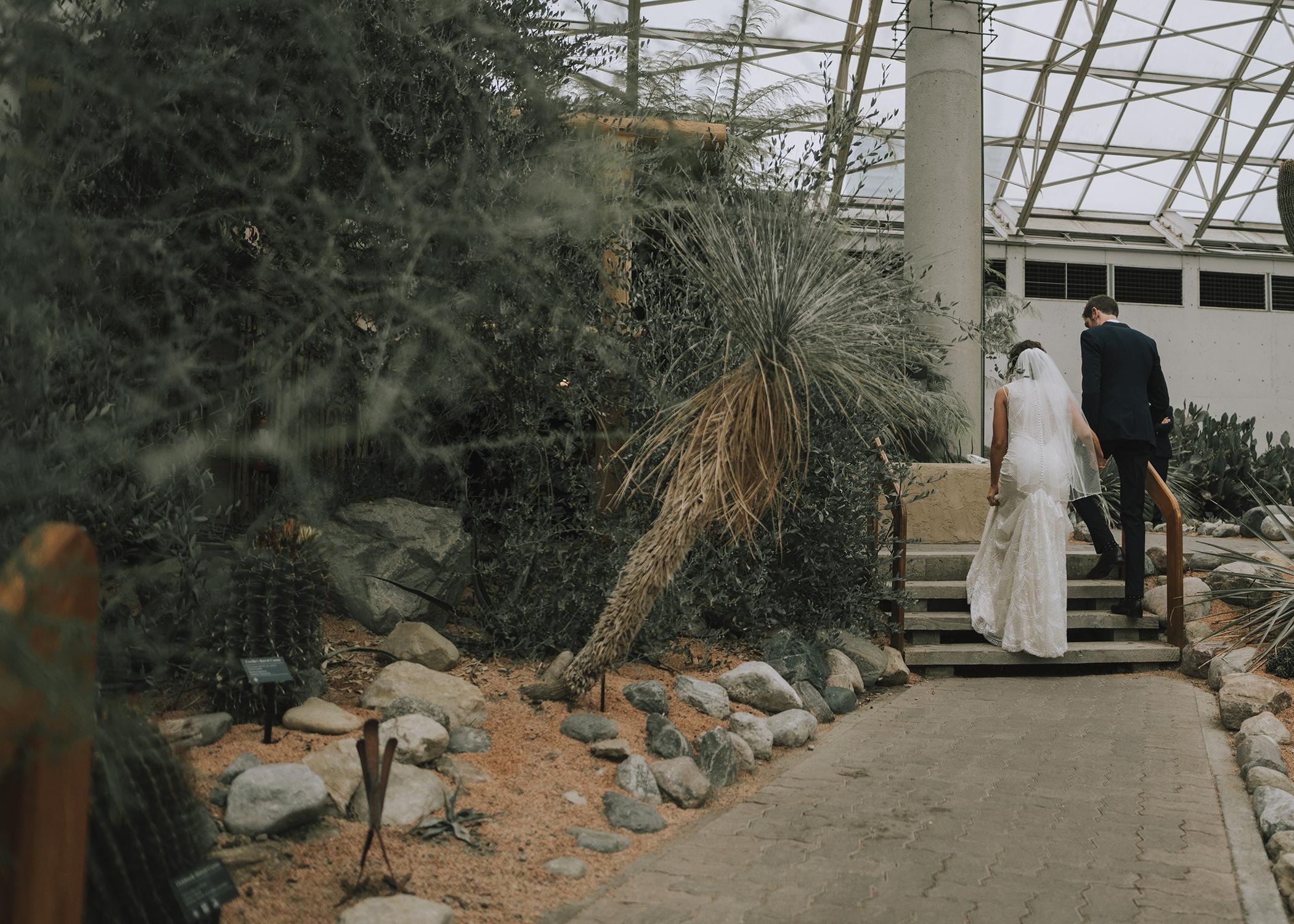 Foellinger-Freimann Botanical Conservatory indianapolis indiana hannah bergman Photography