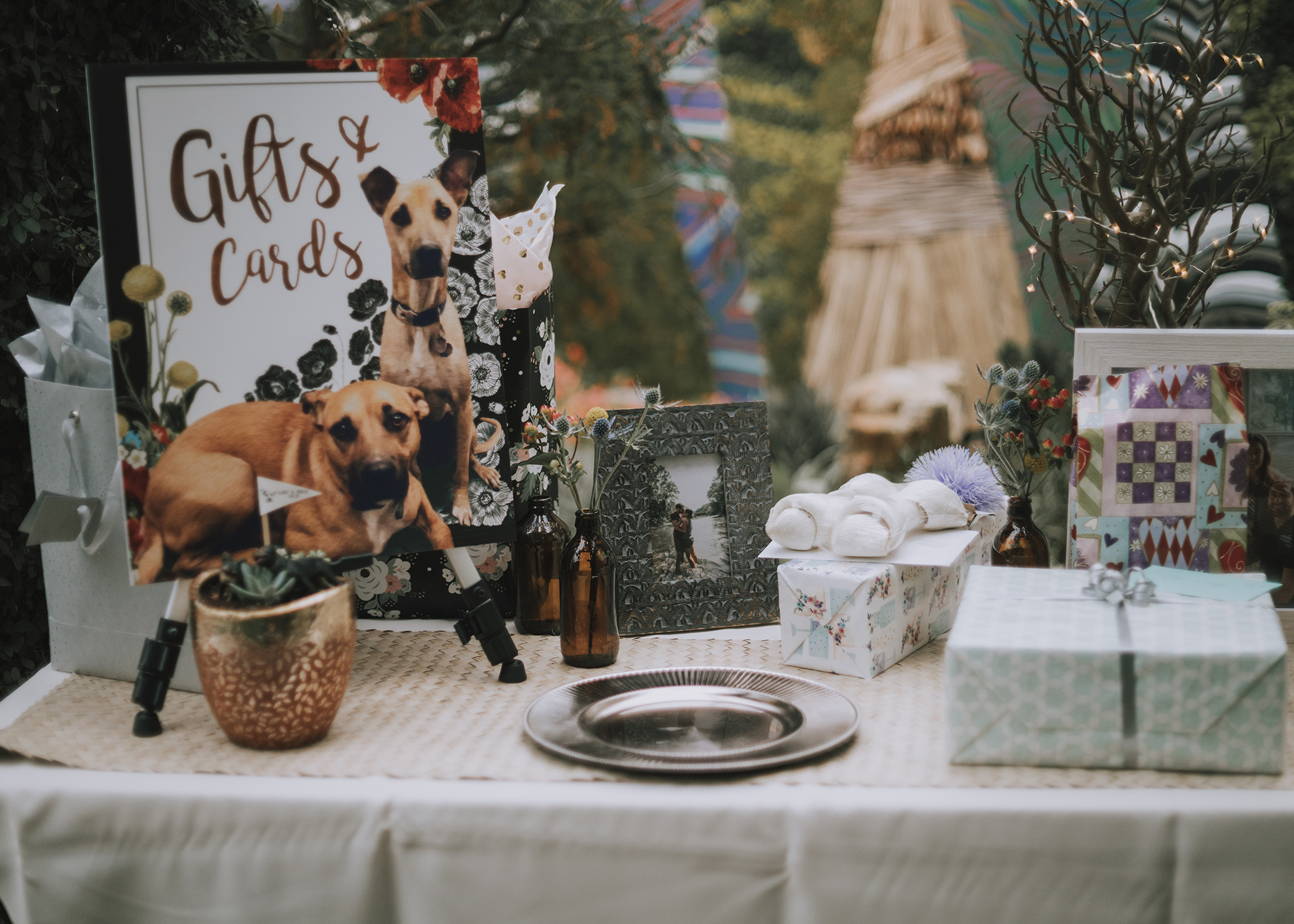 Foellinger-Freimann Botanical Conservatory indianapolis indiana hannah bergman Photography dogs gifts and cards