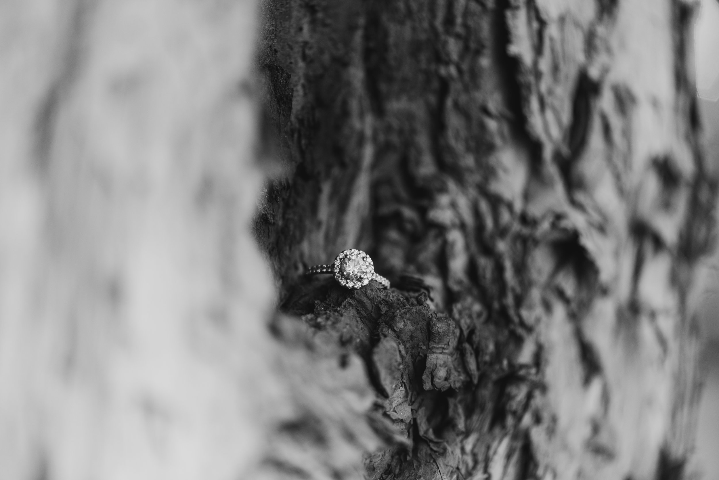 Hes  Styve - Engagement -198.jpg