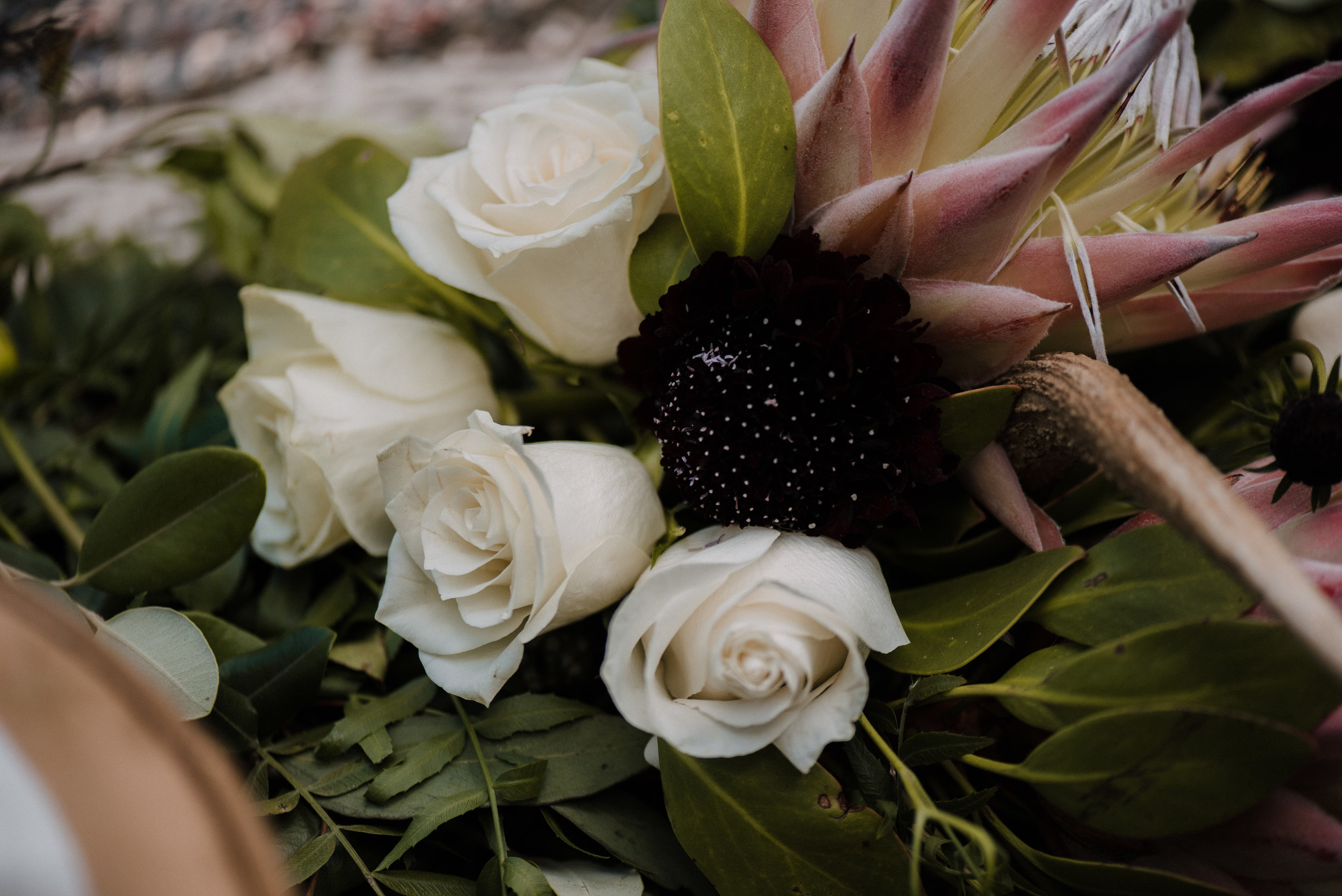 Nellies Glen Styled Shoot-031217-211.jpg