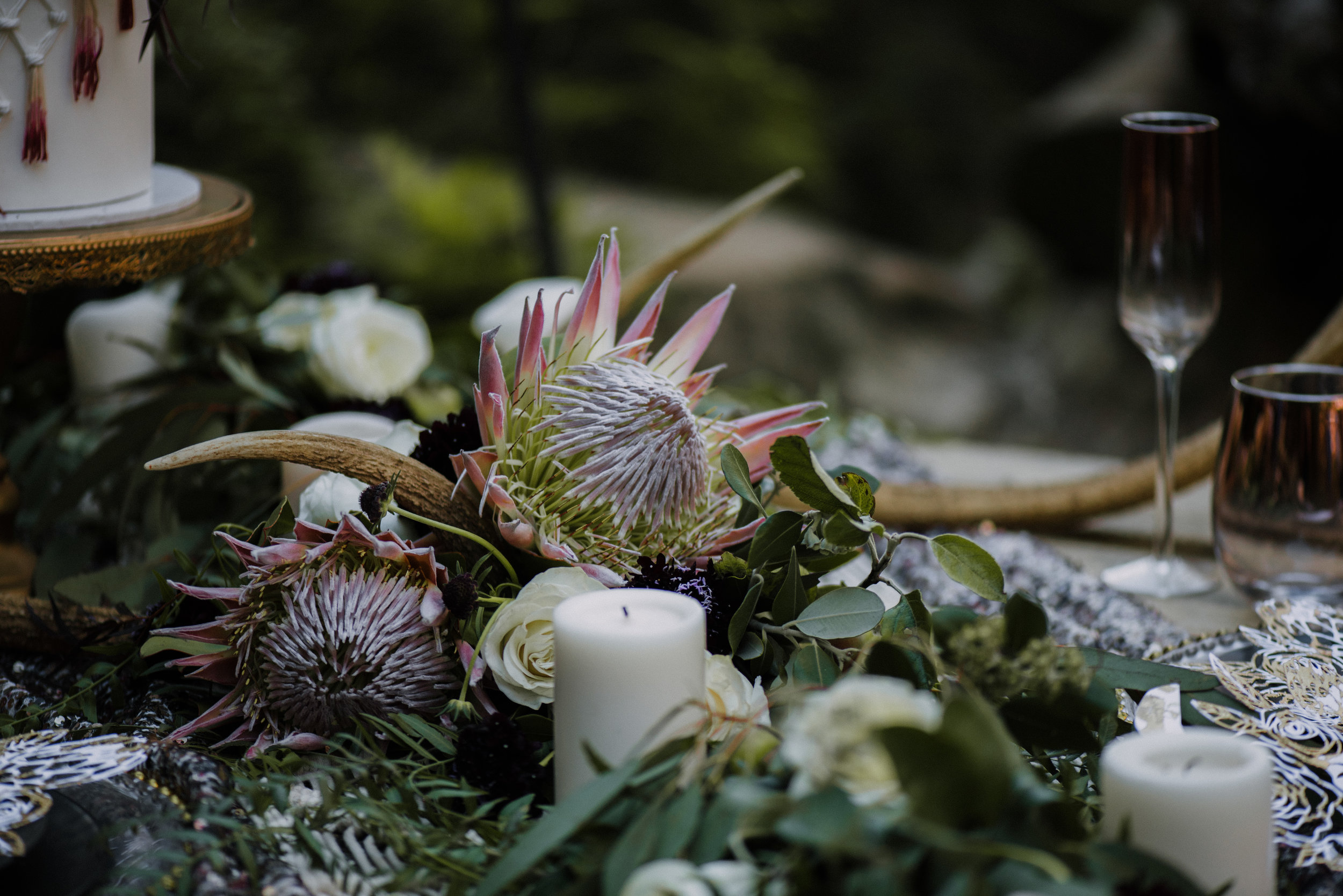Nellies Glen Styled Shoot-031217-265.jpg