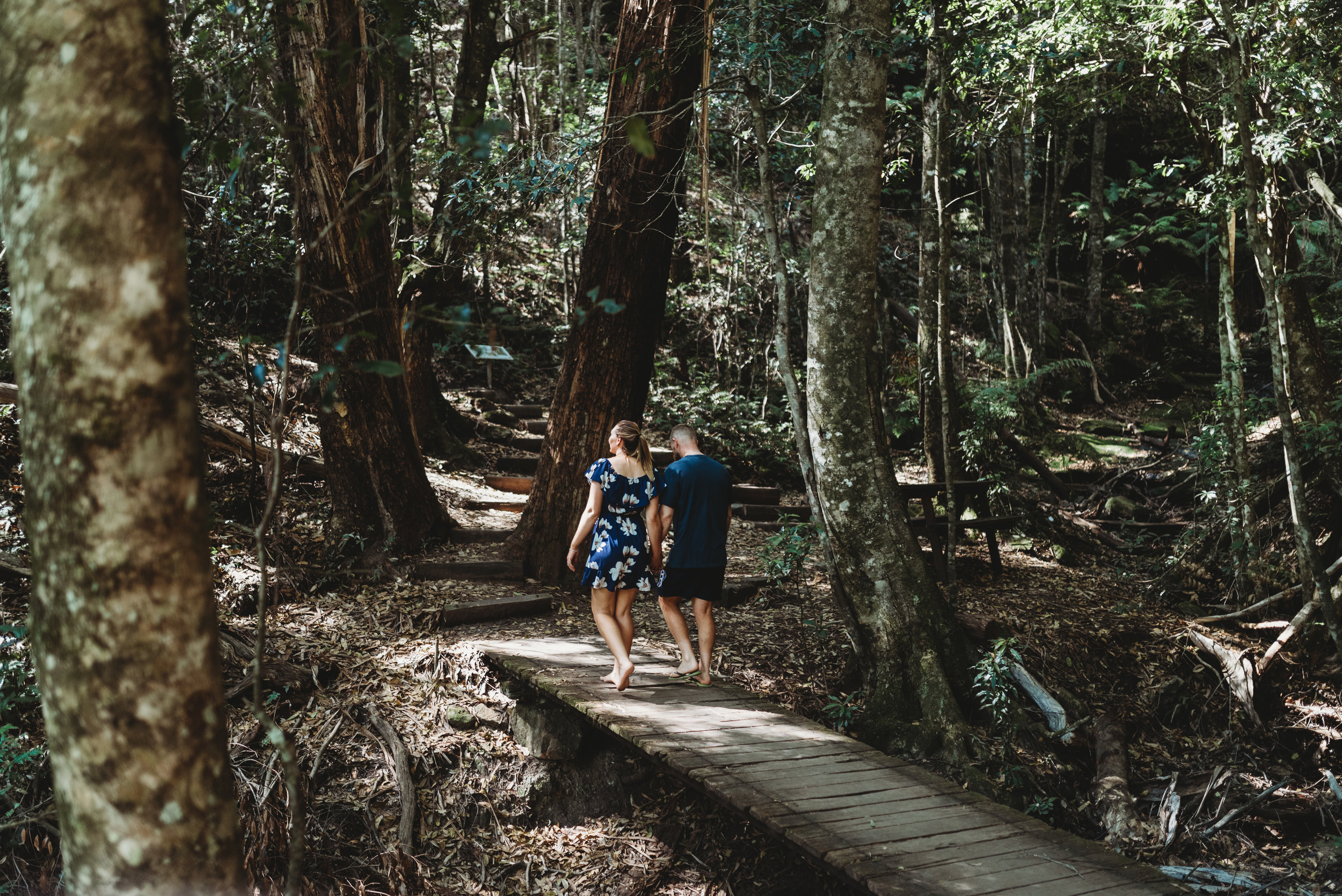 Rebecca & Peter - Blue Mountains Engagement    5th January 2019
