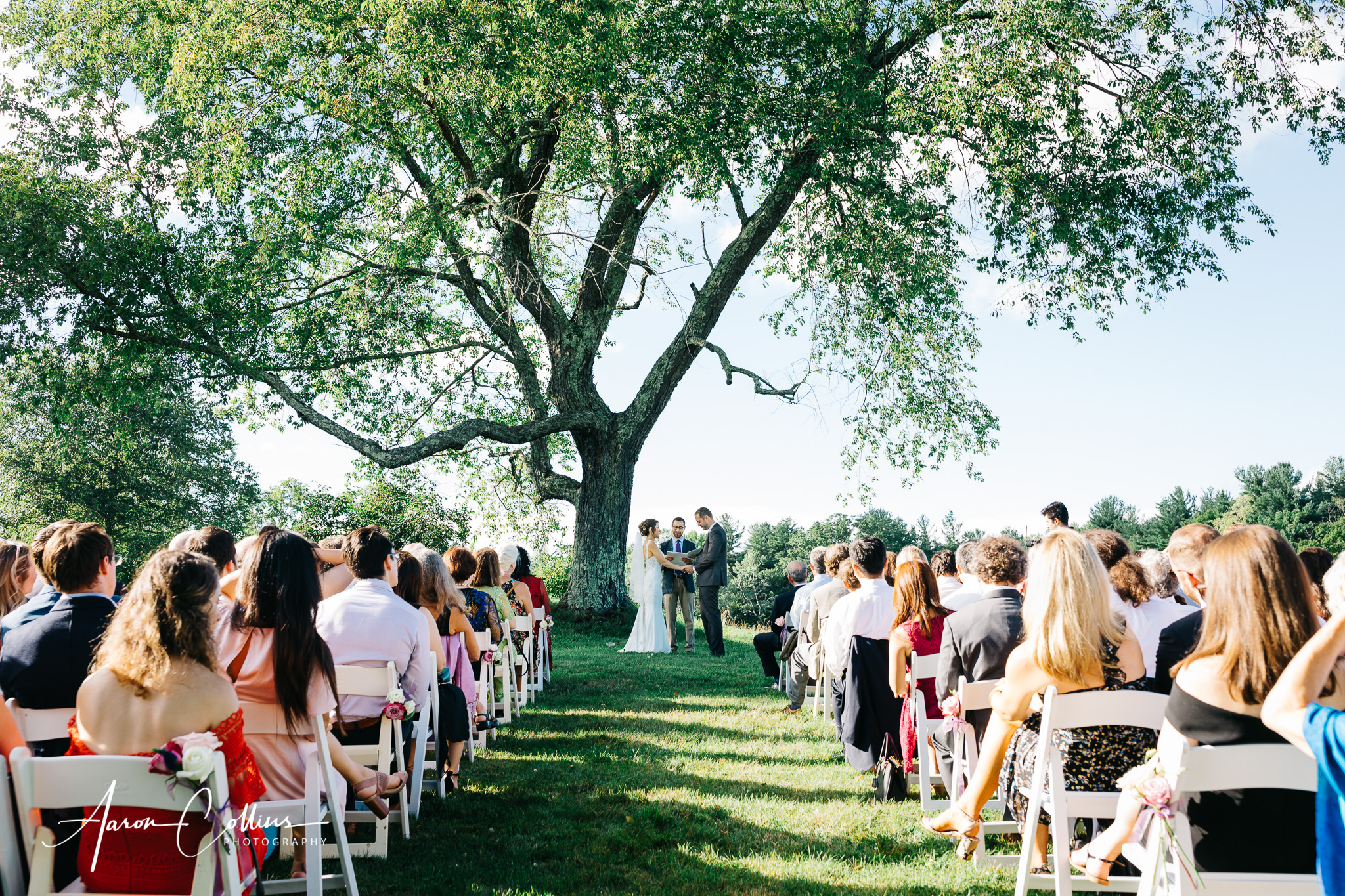Wedding ceremony under the tree at Gedney Farms