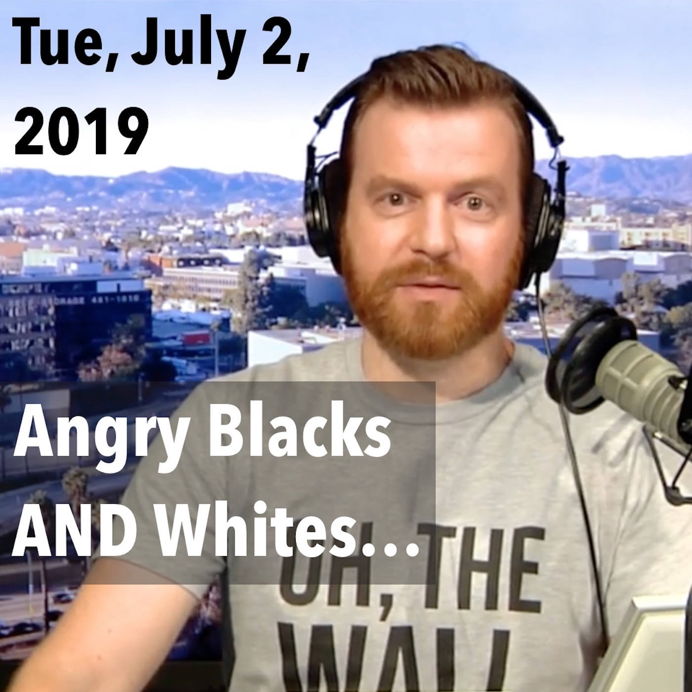 "Square thumbnail from today's show, Tuesday, July 2, 2019: ""Central Park Five Lies; Angry Whites and Blacks Think the Same!"""