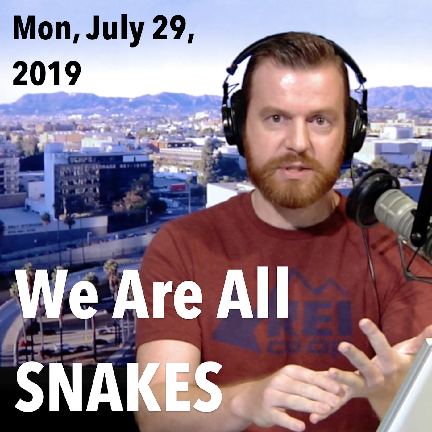 Square thumbnail from The Hake Report Monday, July 29, 2019: We Are All SNAKES