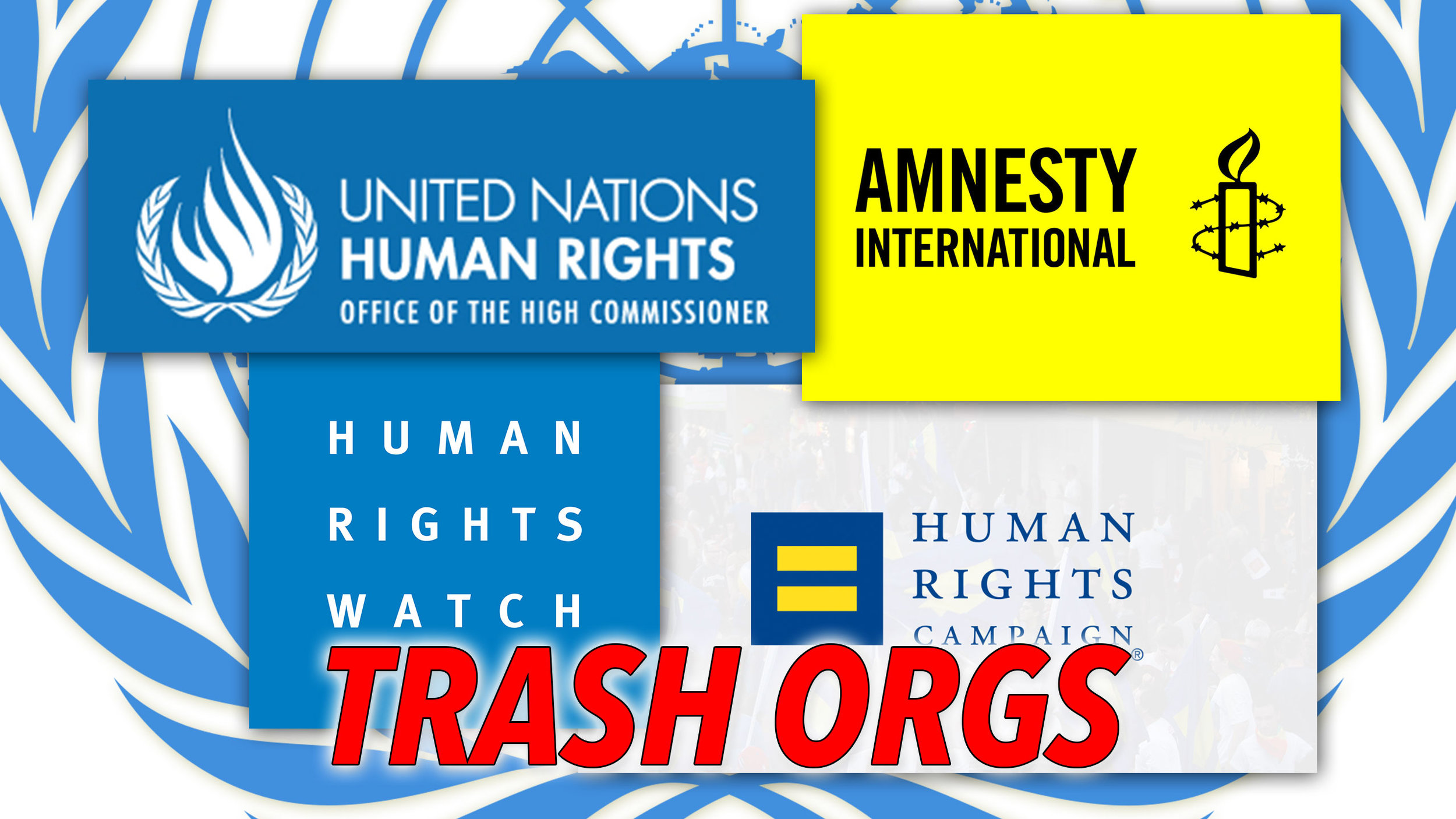 Thumbnail: Trash Orgs: United Nations Human Rights: Office of the High Commissioner, Amnesty International, Human Rights Watch, Human Rights Campaign…