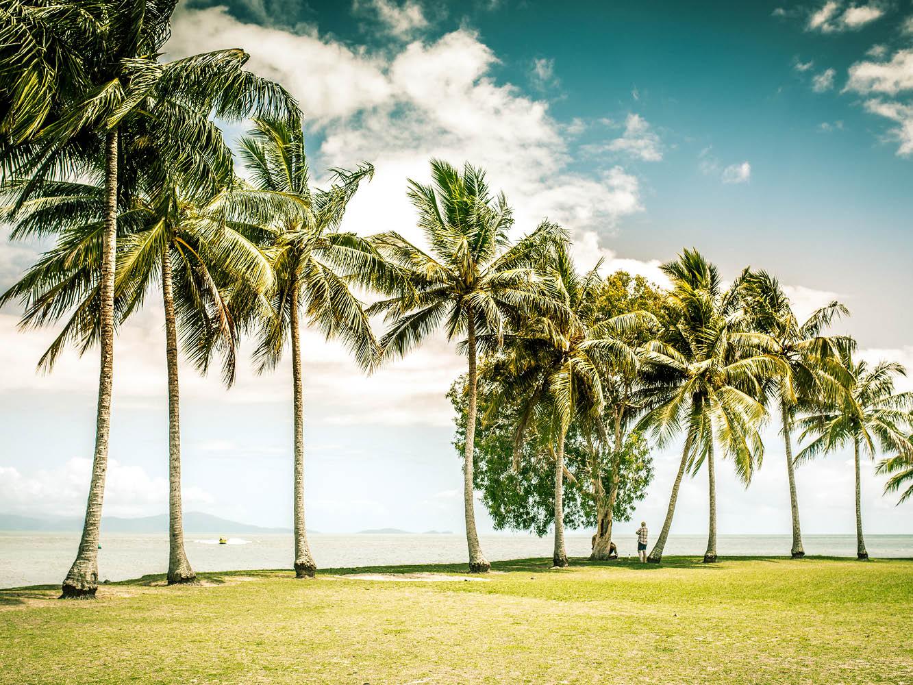 ©pdu_june_feature_winter_tropics6.jpg