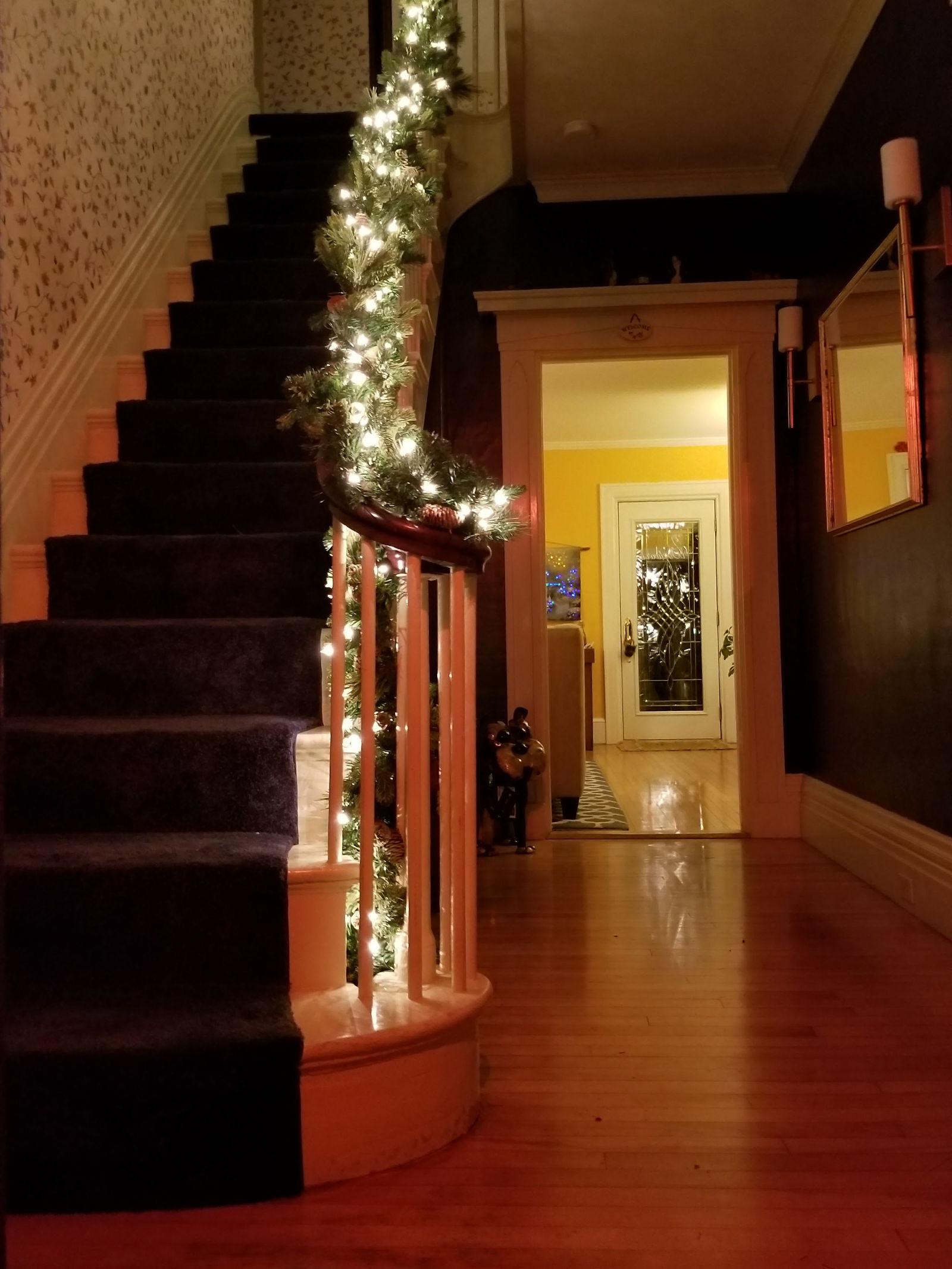 Camden Windward House Foyer at Christmas