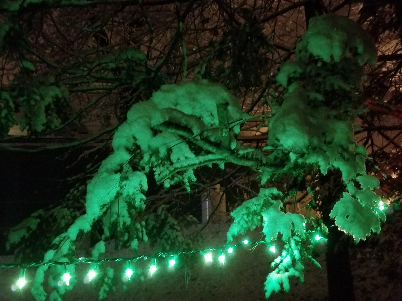 Christmas Snow at Camden Windward House
