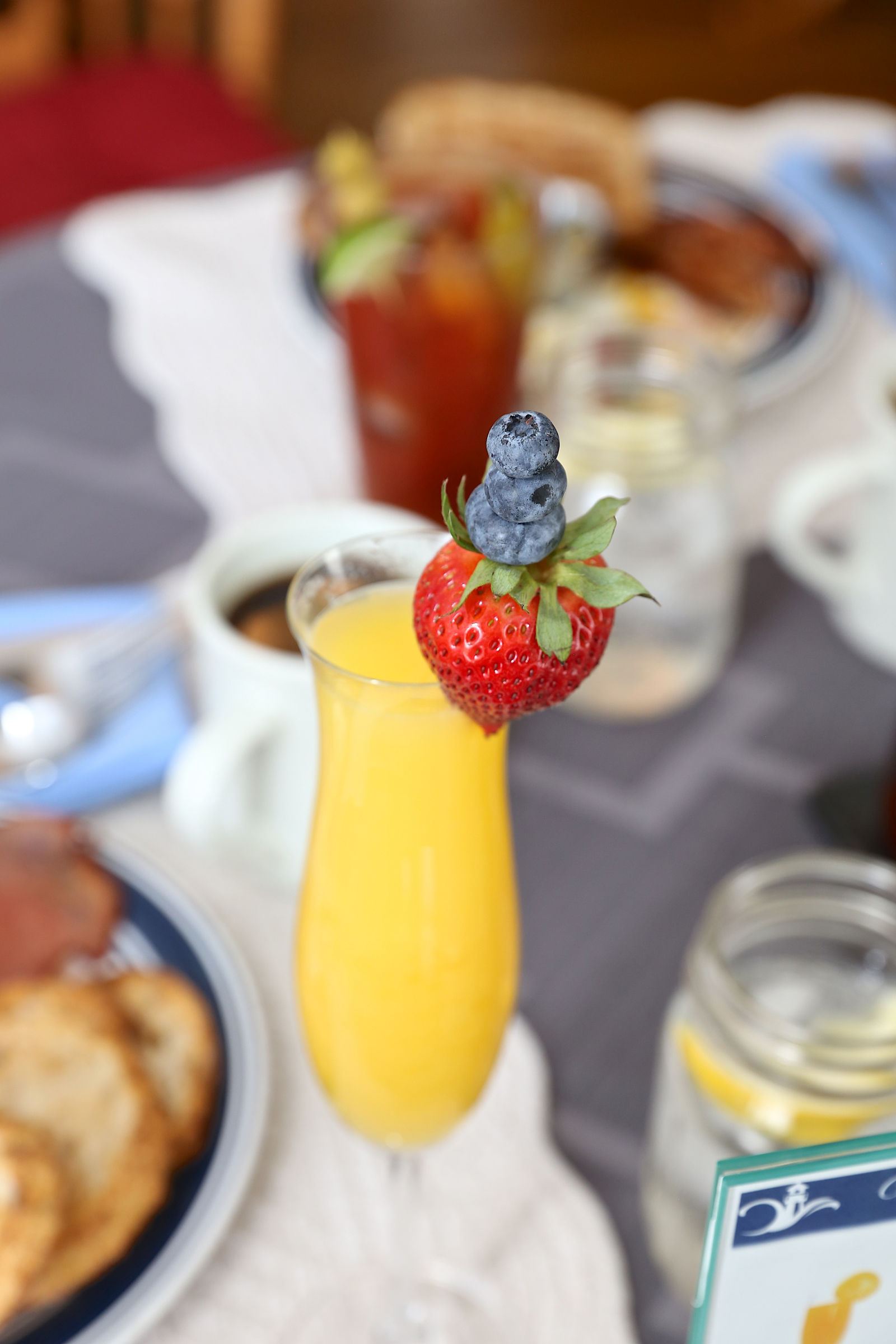 mimosa-web.jpg
