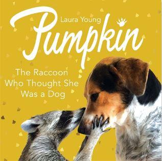 Pumpkin book cover.JPG
