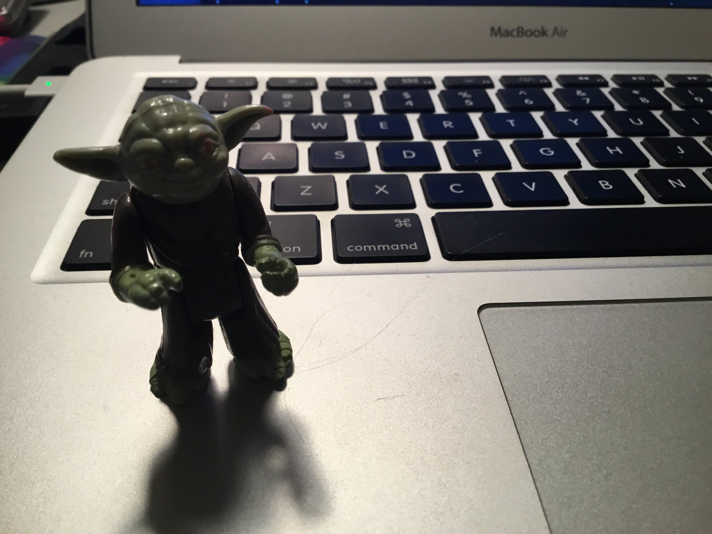 Sherry Howard Yoda pic.jpg