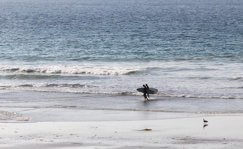 BTW18 Marine Debris - Surfer.jpg