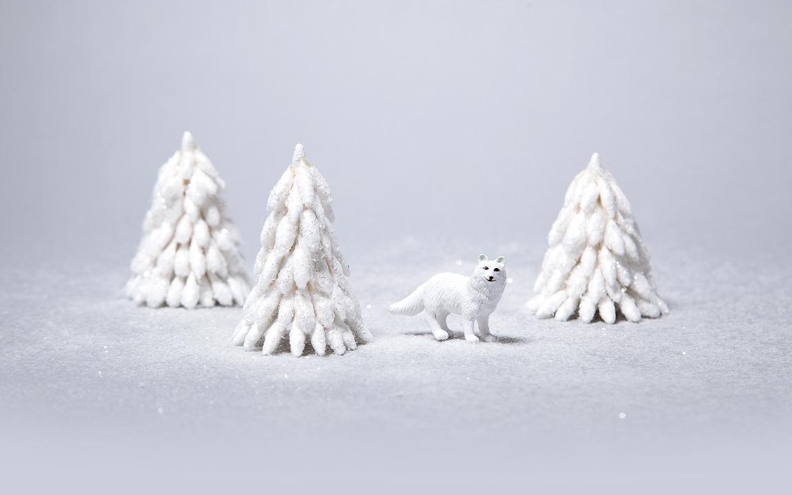 snowtrees.jpeg